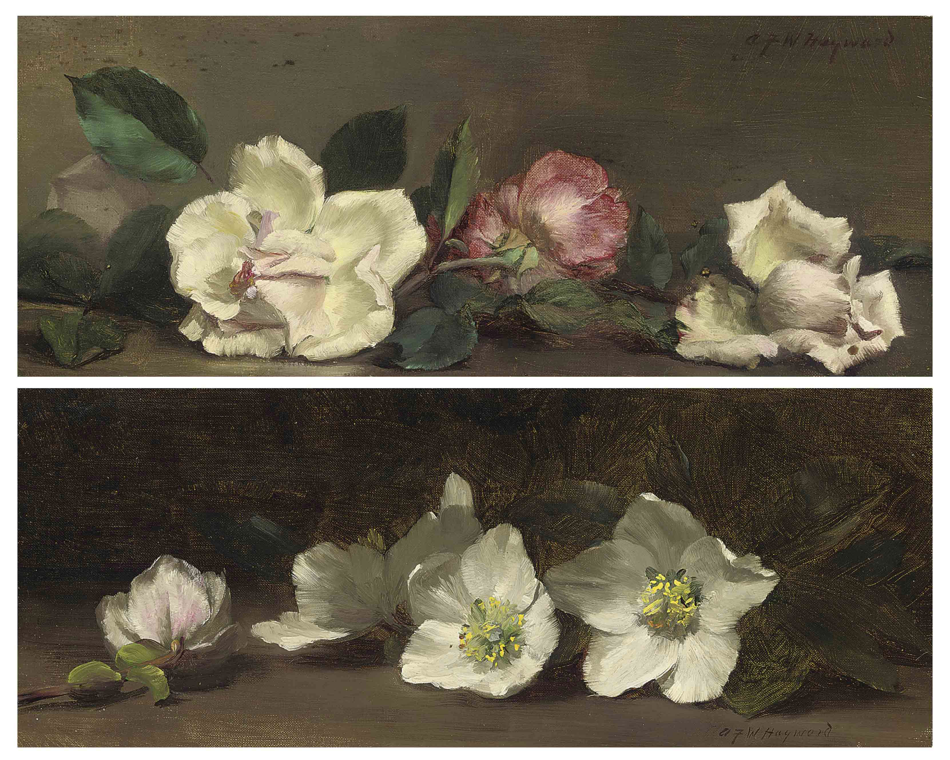Roses; and Anemones