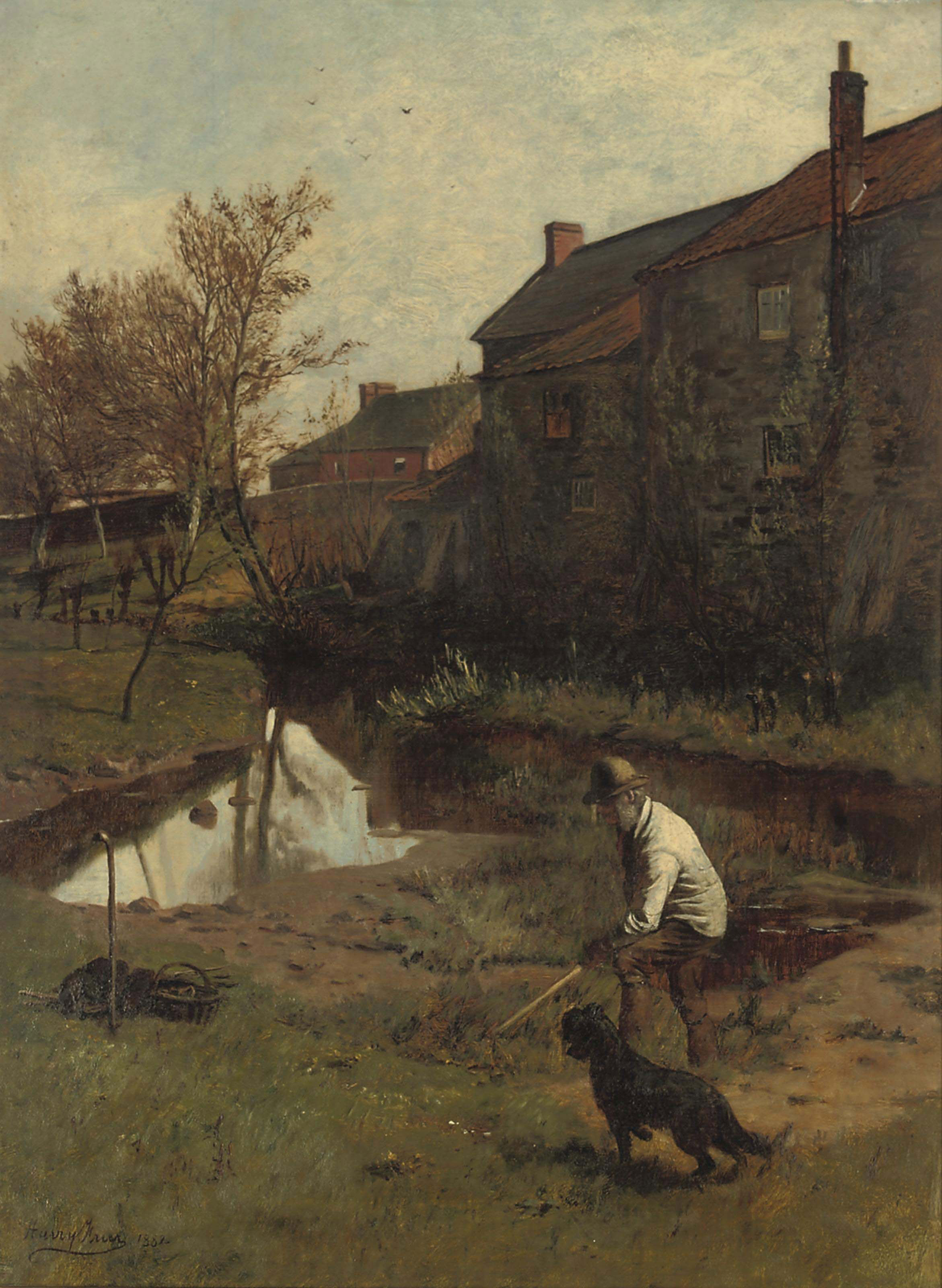 Morning on the stream