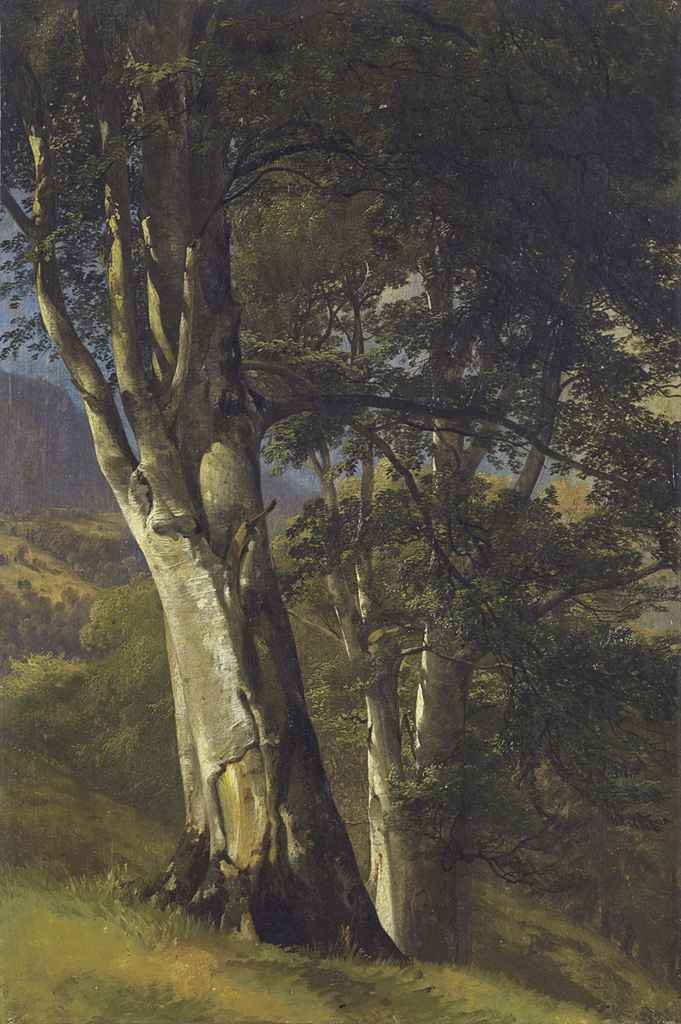 Arbres, um 1850