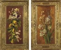 Fiori e frutta  Iris