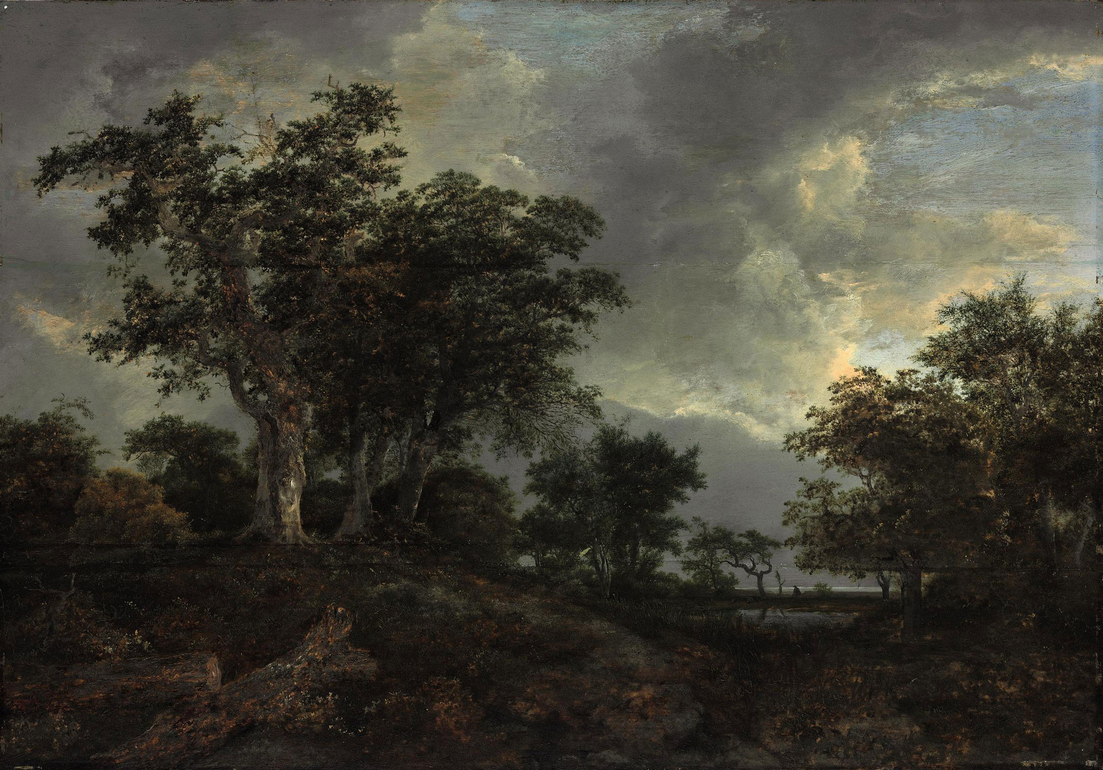 A wooded landscape with a pond