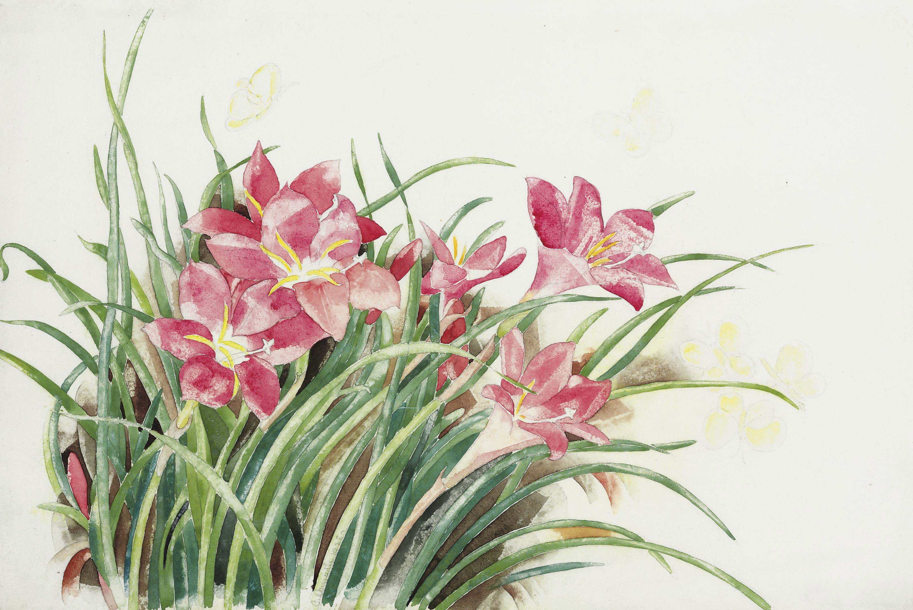 Pink Lilies and Butterflies
