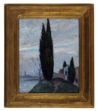 Cypress tree in a landscape