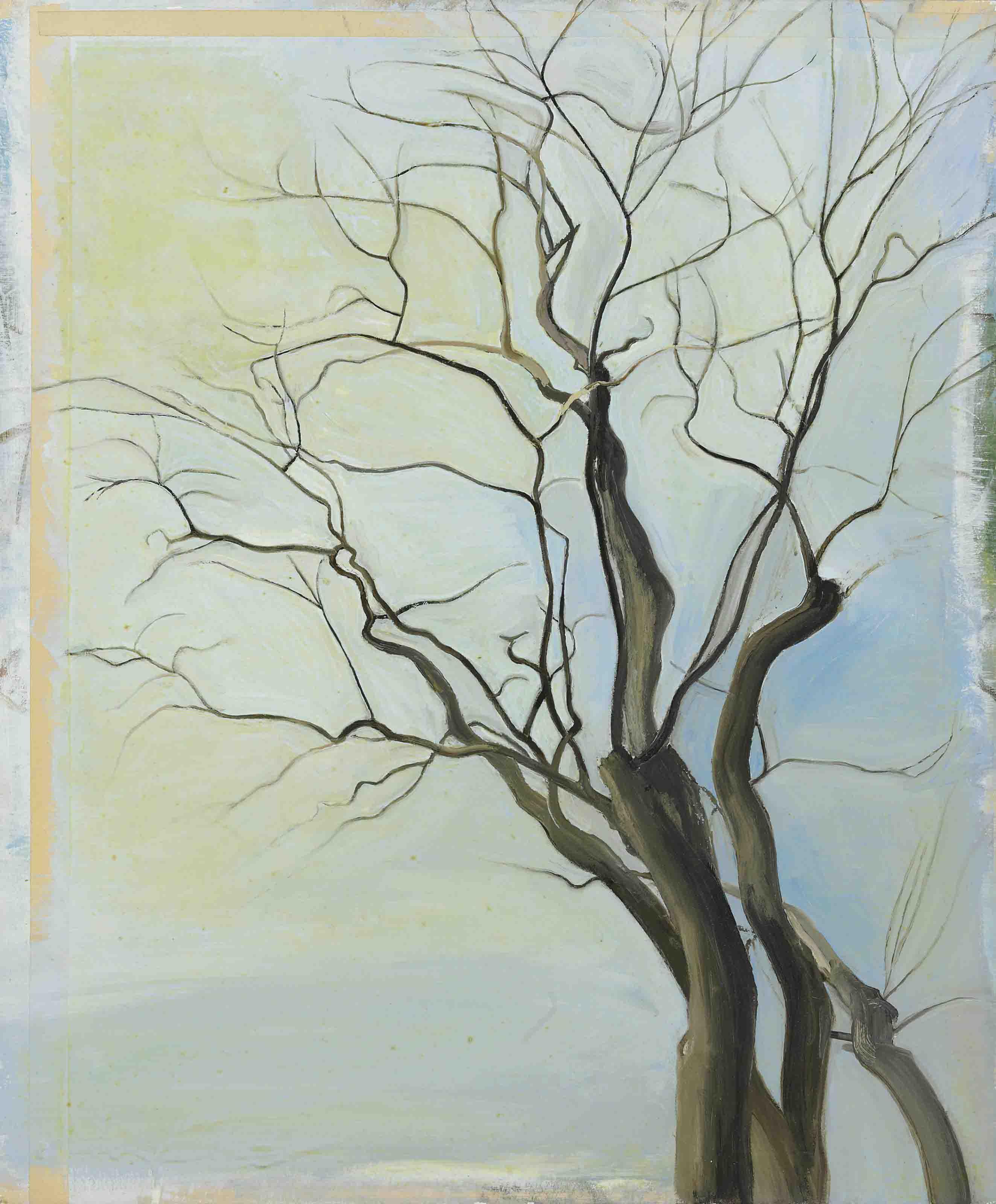 The Locust Trees