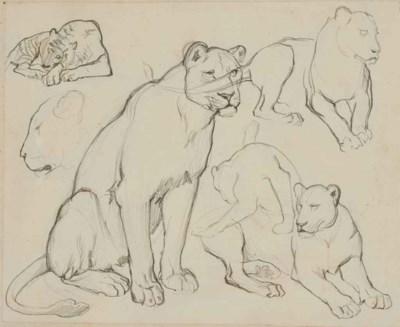 ARMAND-ALEXIS LARROQUE (1869-?