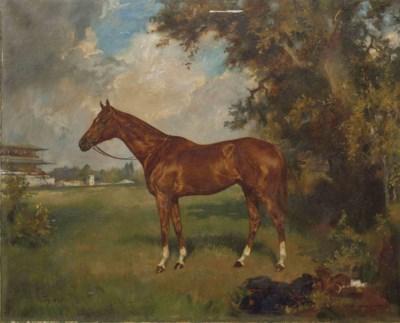 KONRAD IGNAZ (HONGRIE 1894-196