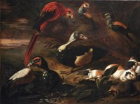A landscape with a scarlet macaw, two ducks, a hedgehog, three guinea pigs, a crab and other birds near a stream