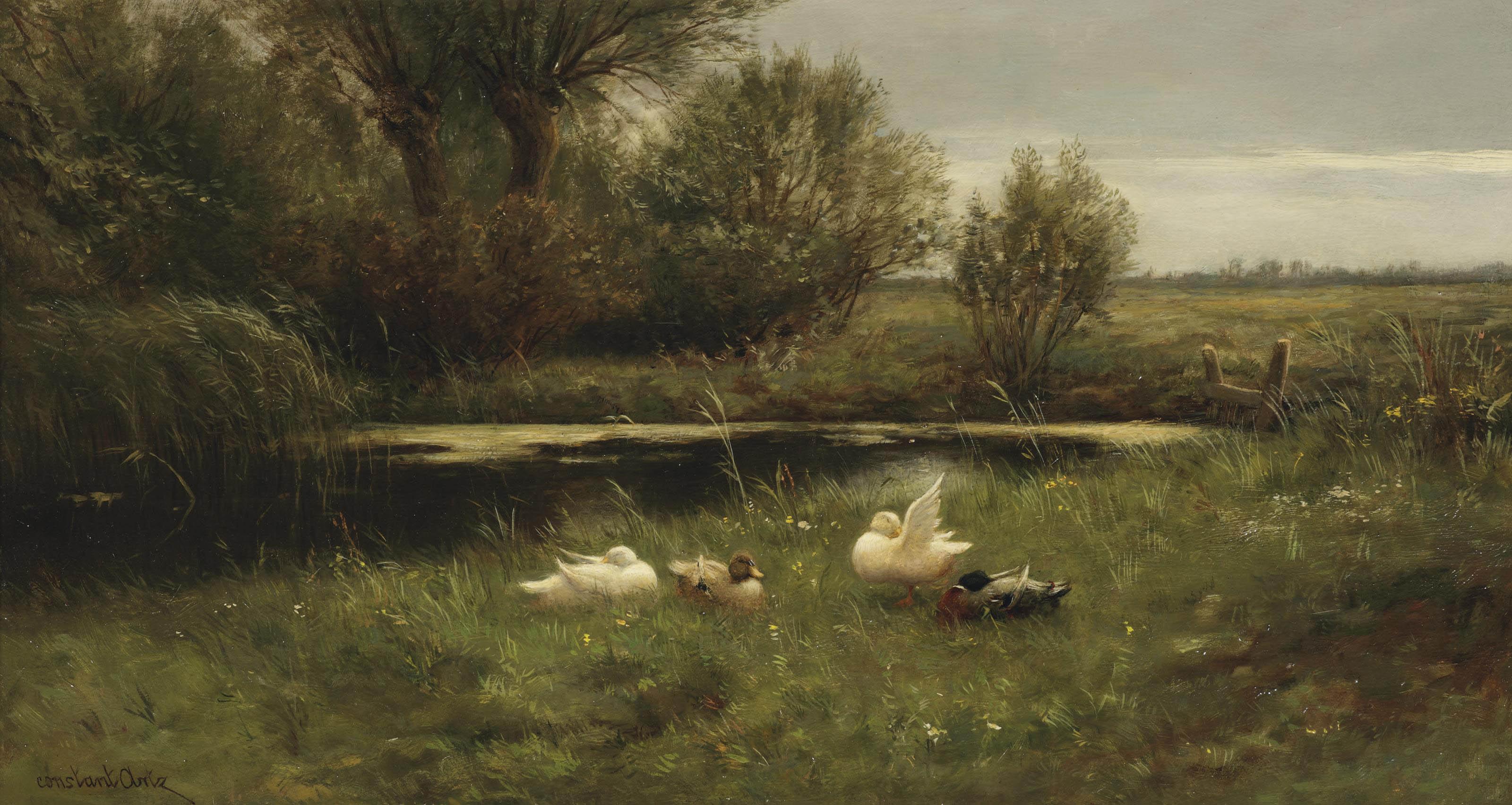 Ducks in a sunlit river landscape