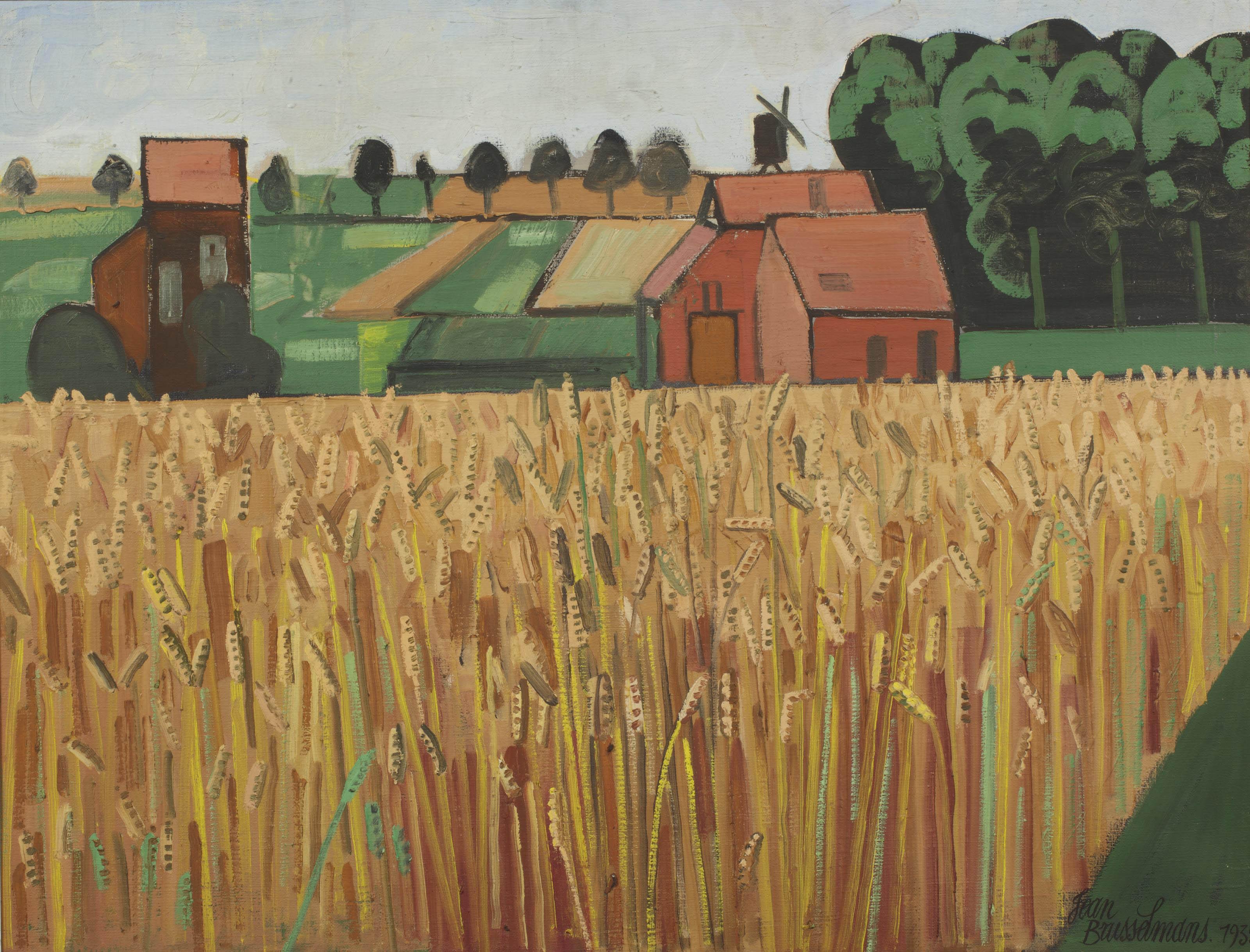 Korenveld; cornfield