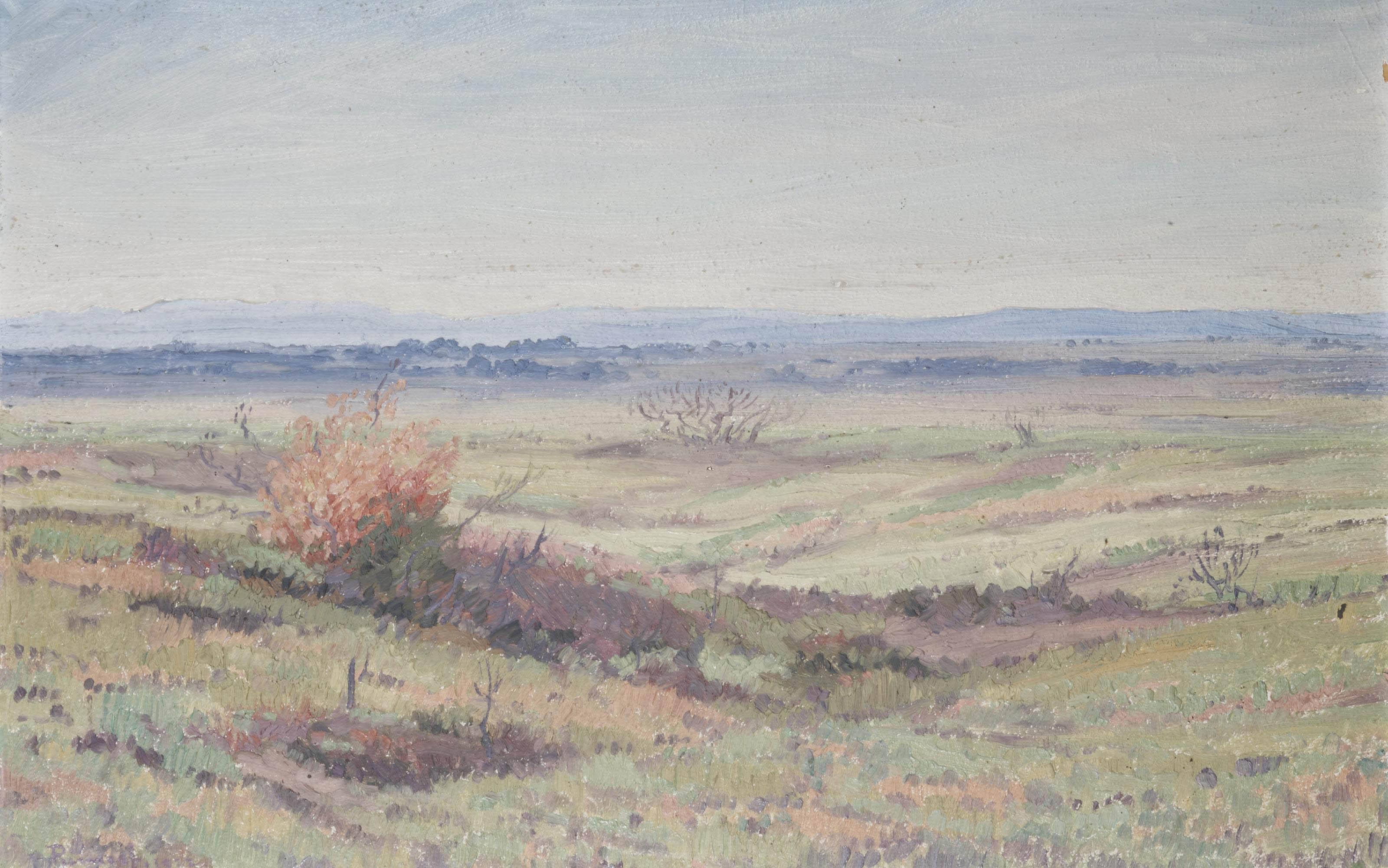 Springbokvlakte der Waterborg Transvaal, Voorjaar; spring in Transvaal, South Africa
