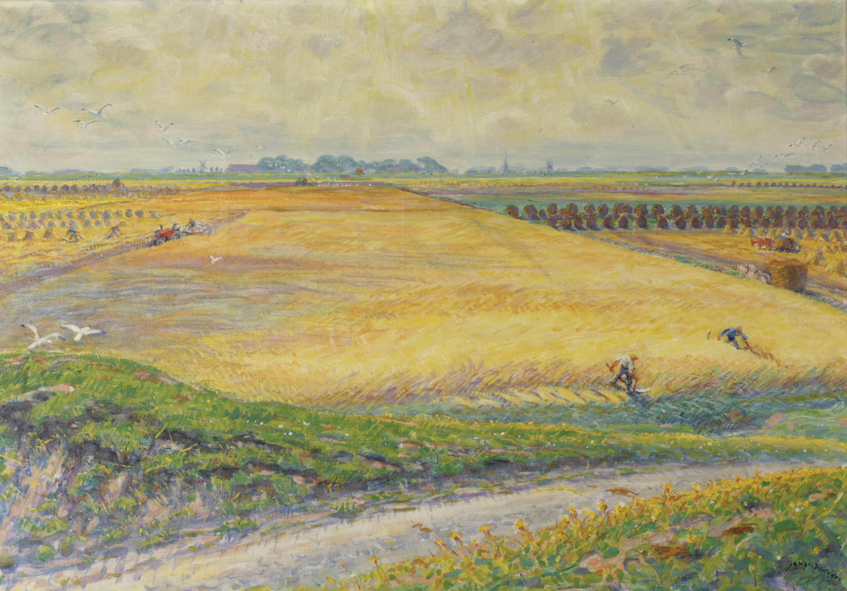 Harvesting, Groningen
