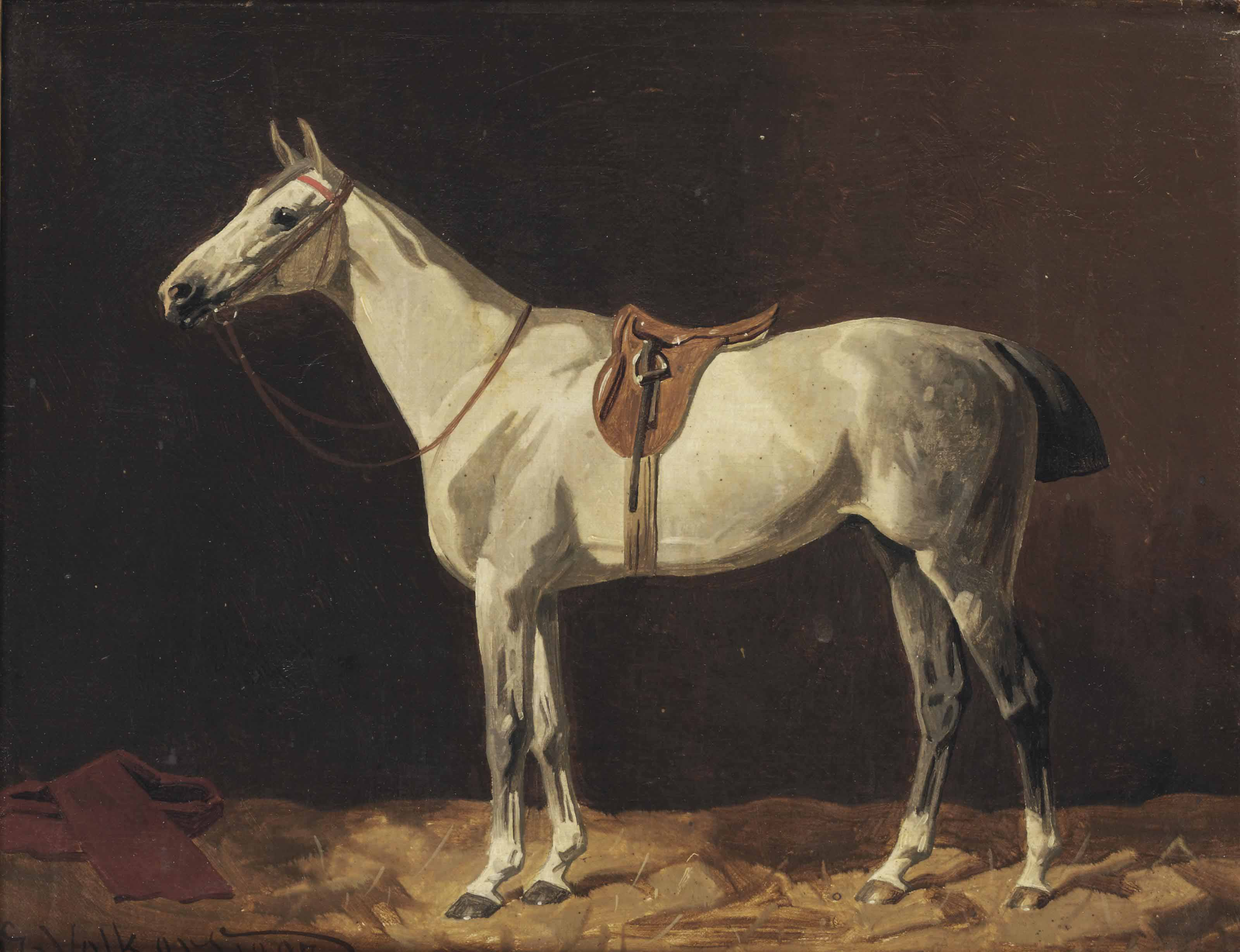 A saddled grey horse waiting in a stable