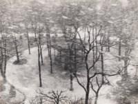Le Square des Epinettes, 1950
