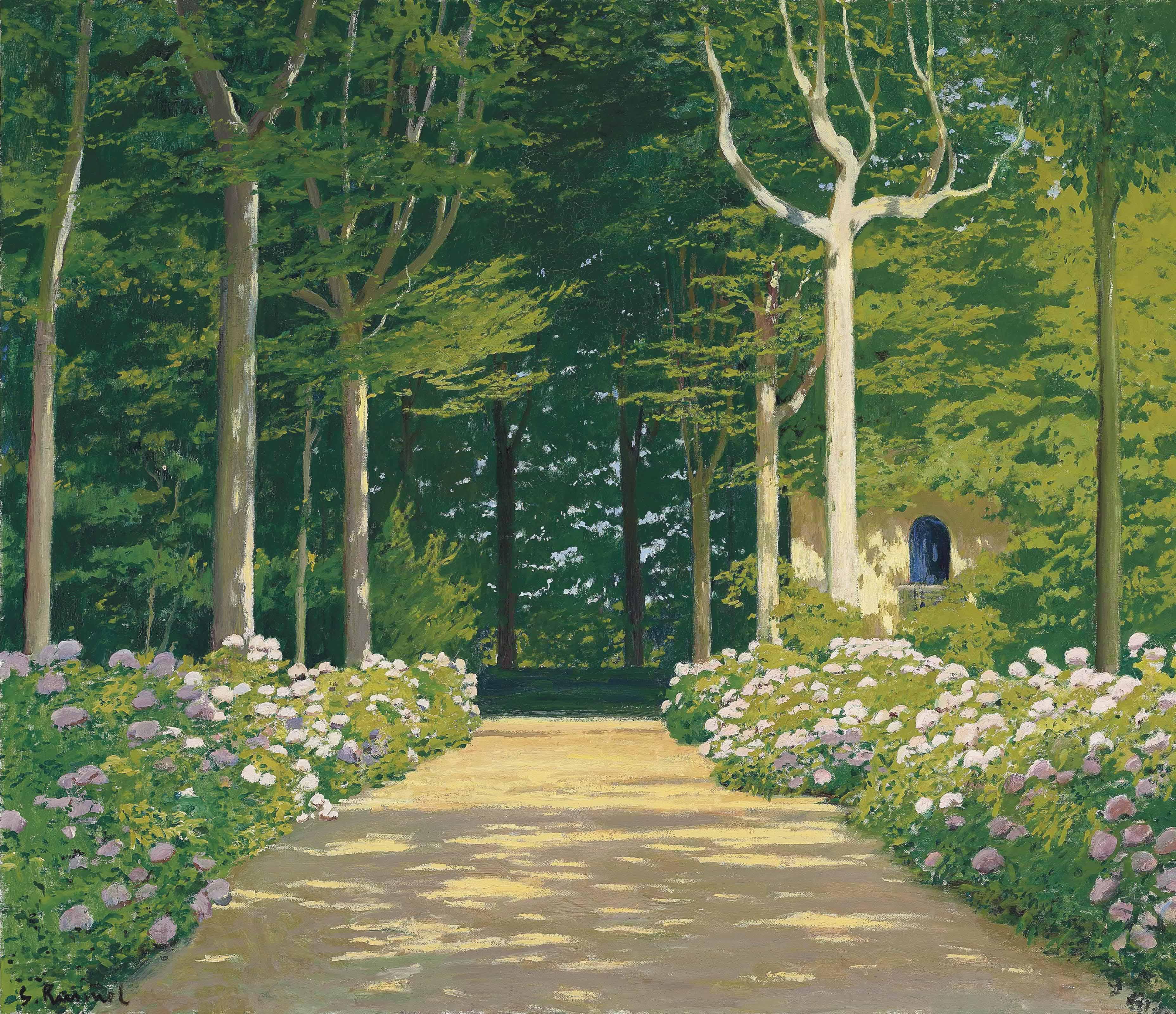 Hydrangeas on a garden path