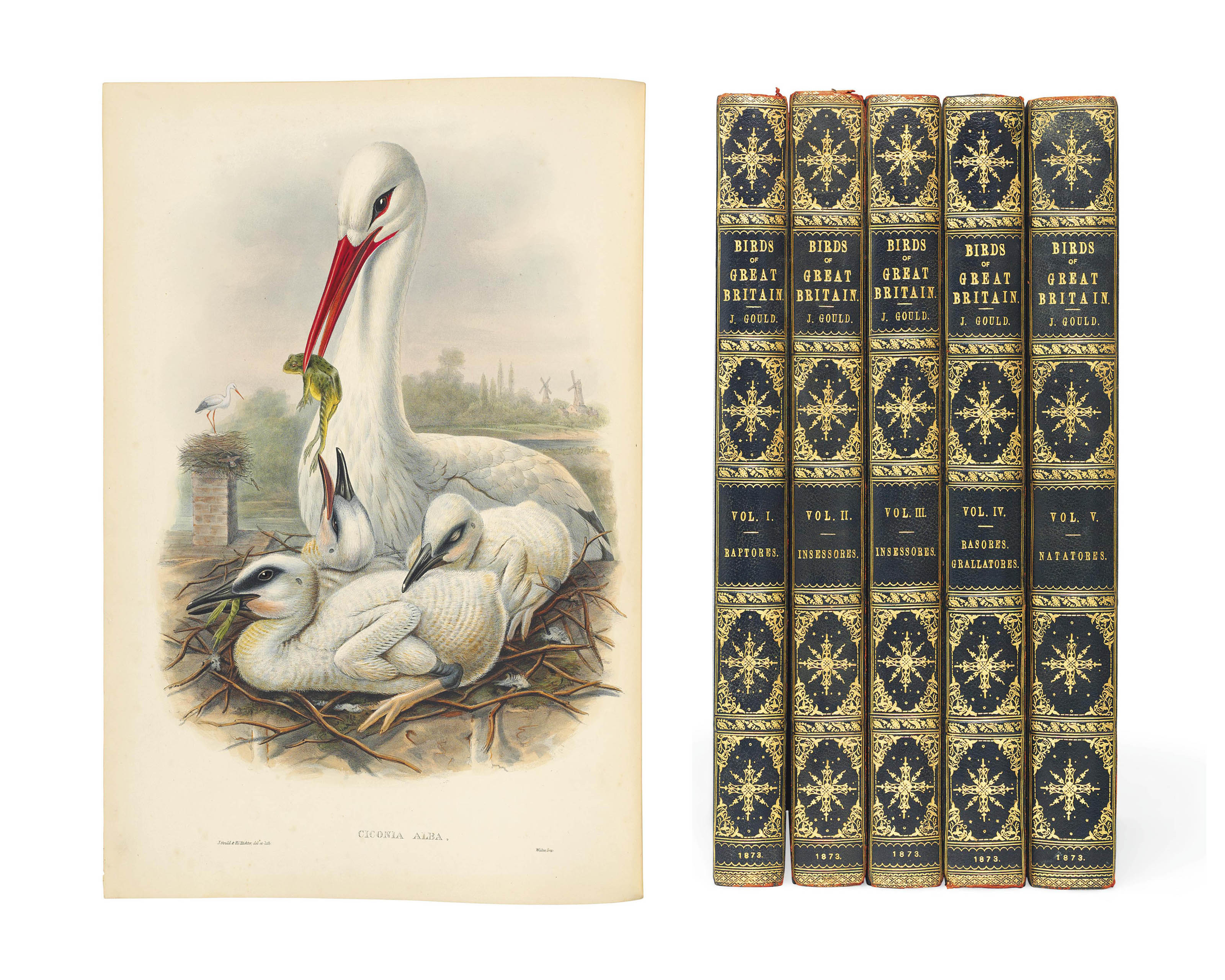 GOULD, John (1804-1881). The Birds of Great Britain. London: Taylor and Francis for the author, [1862]-1873.