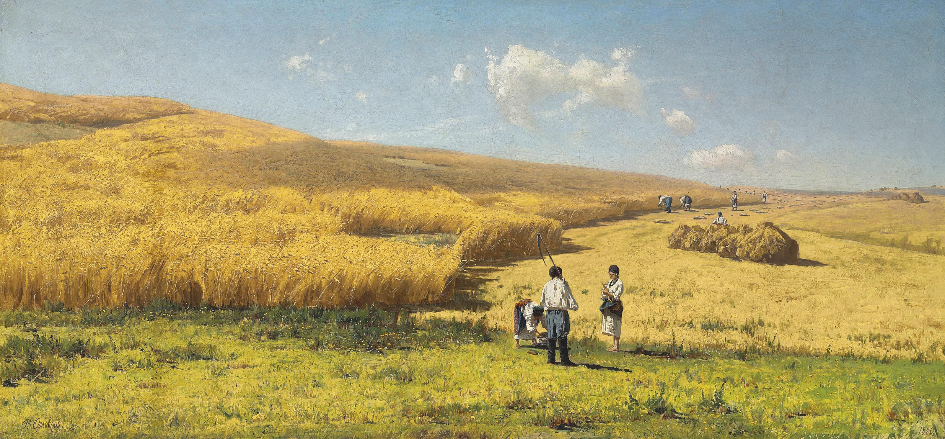 Harvest in the Ukraine