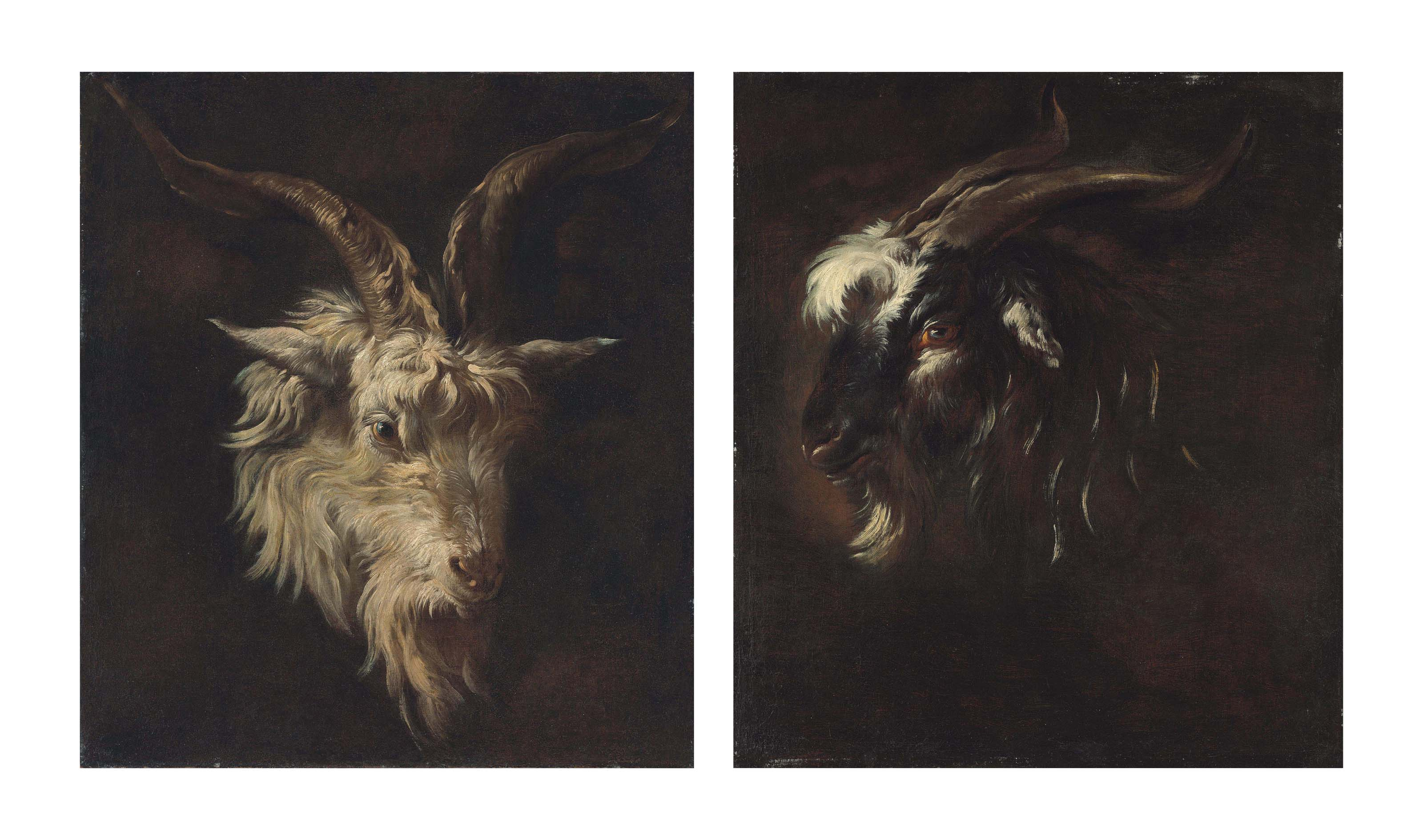 Head study of a white goat; and Head study of a black goat