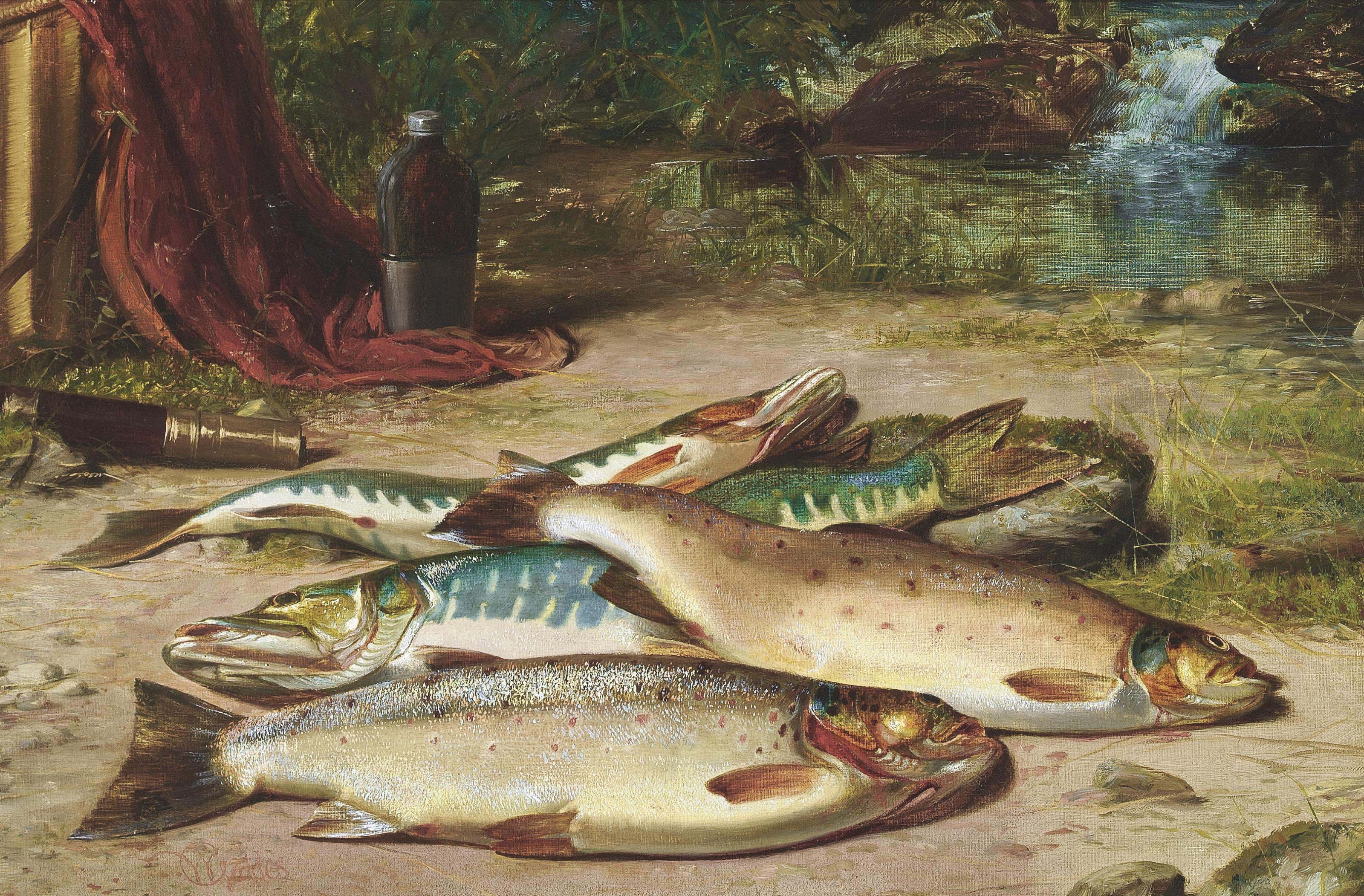 Trout and pike
