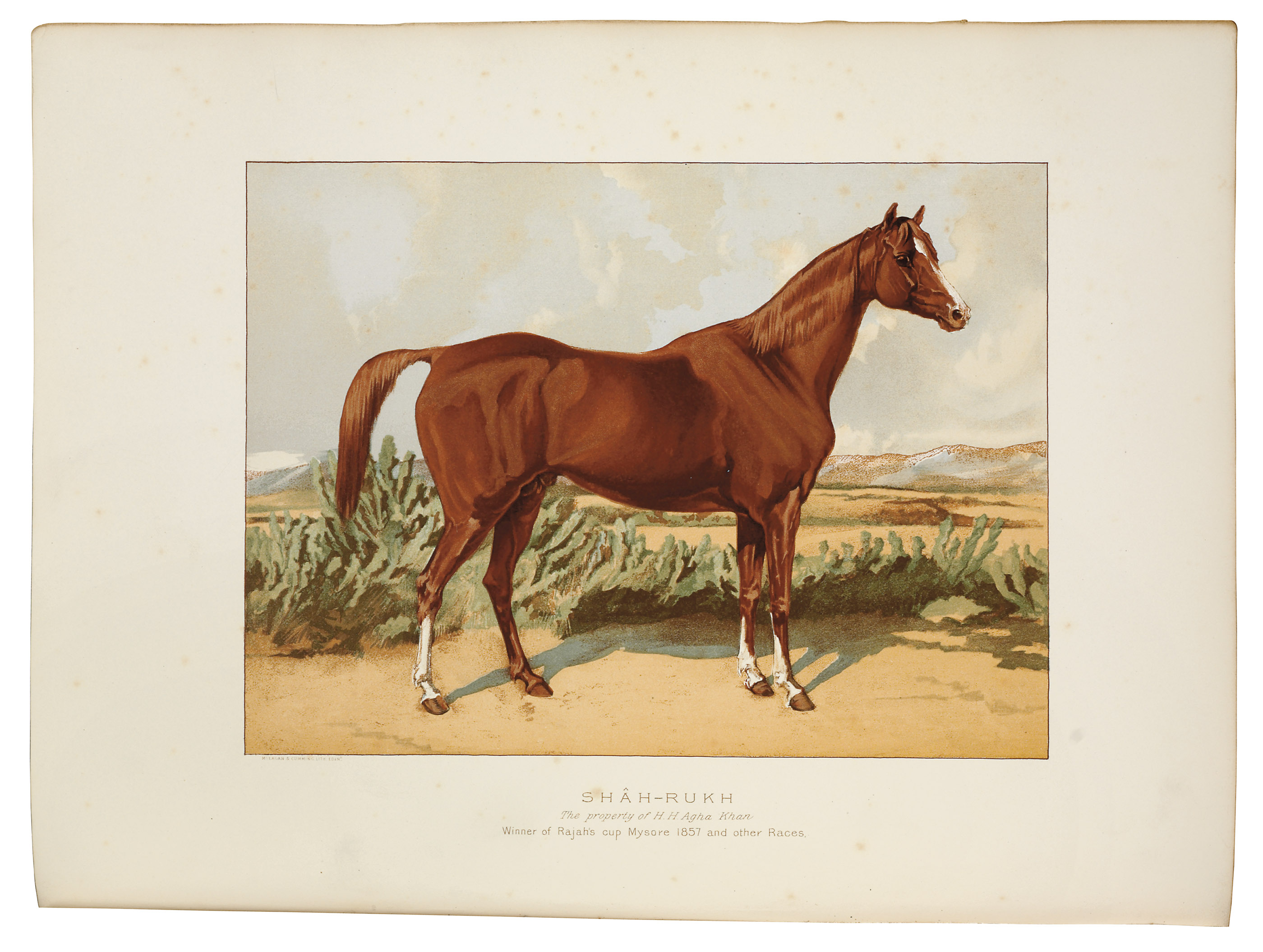 TWEEDIE, William. The Arabian Horse: His Country and People. Edinburgh: William Blackwood and Sons, 1894. 4° (340 x 253mm). Title printed in red and black, plates and illustrations, folding map in rear pocket. (Occasional spotting, a few creases, folding map with a few small clean tears.) Original black half morocco gilt, top edge gilt, others uncut, modern cloth slipcase (a little rubbed and scuffed).