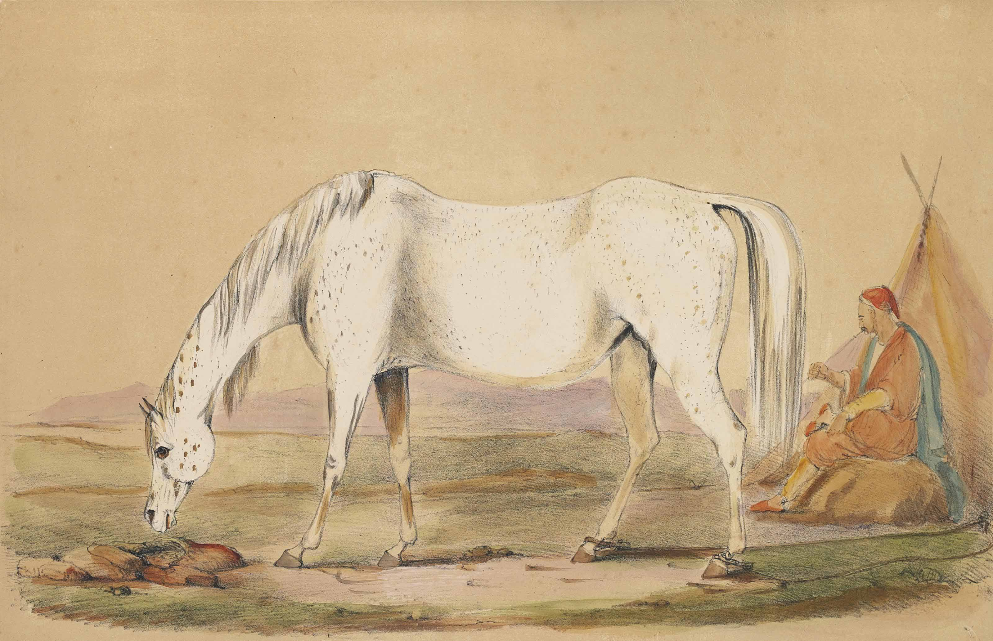 W. C. Portraits of Brood Mares Belonging to the Royal Stud at Hampton Court.  London: William Nicol, 1837. 2° (425 x 360mm). 24 chromolithographic plates by A. Ducotés. (Occasional light marginal soiling and spotting.) Contemporary half red morocco gilt, top edge gilt (extremities rubbed).