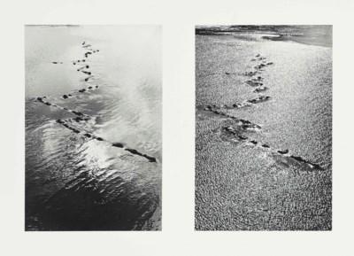 Andy Goldsworthy (B. 1956)