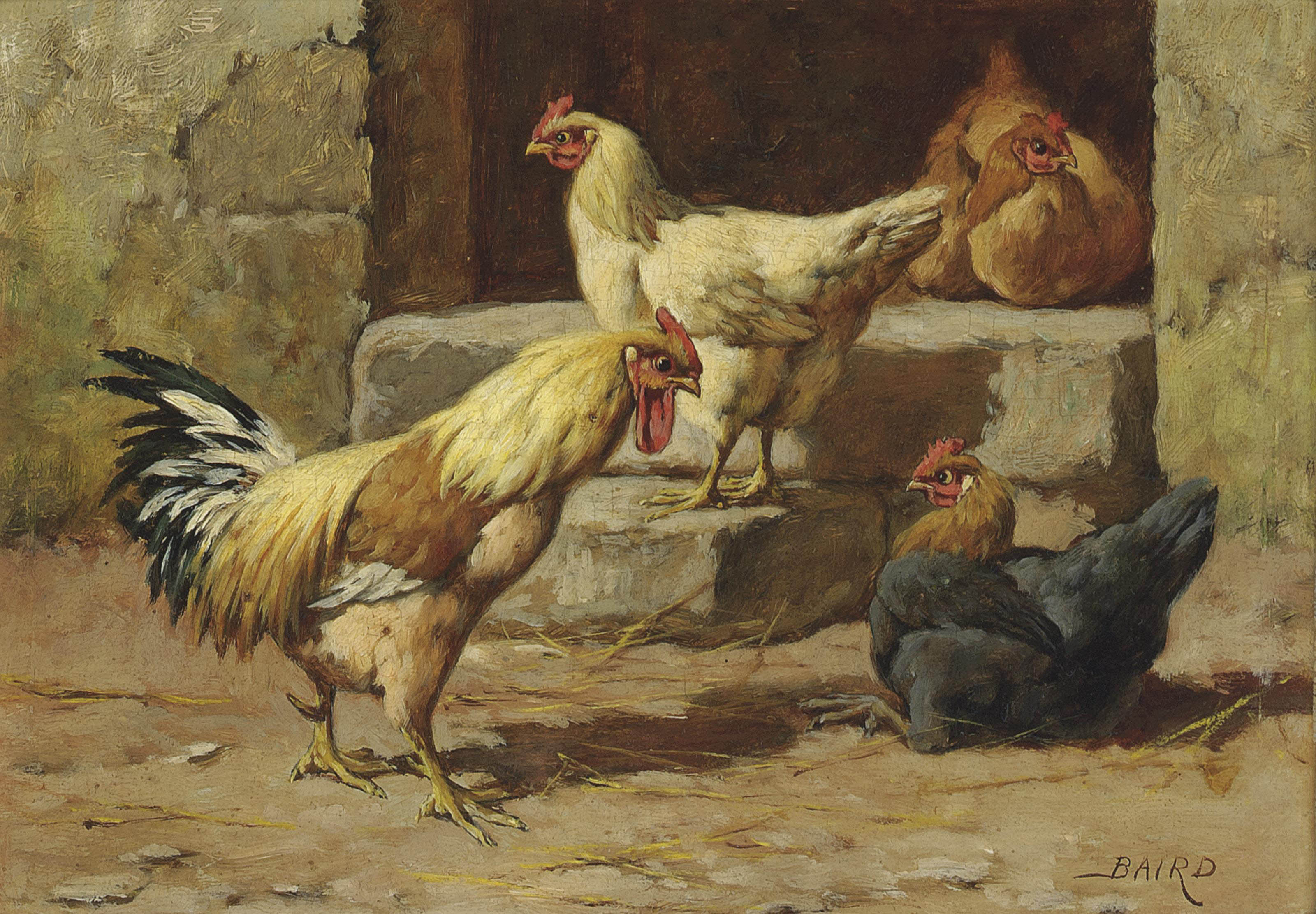 A group of poultry; and A garden corner