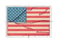 American Flag Ant Farm