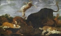 Hounds attacking a bull