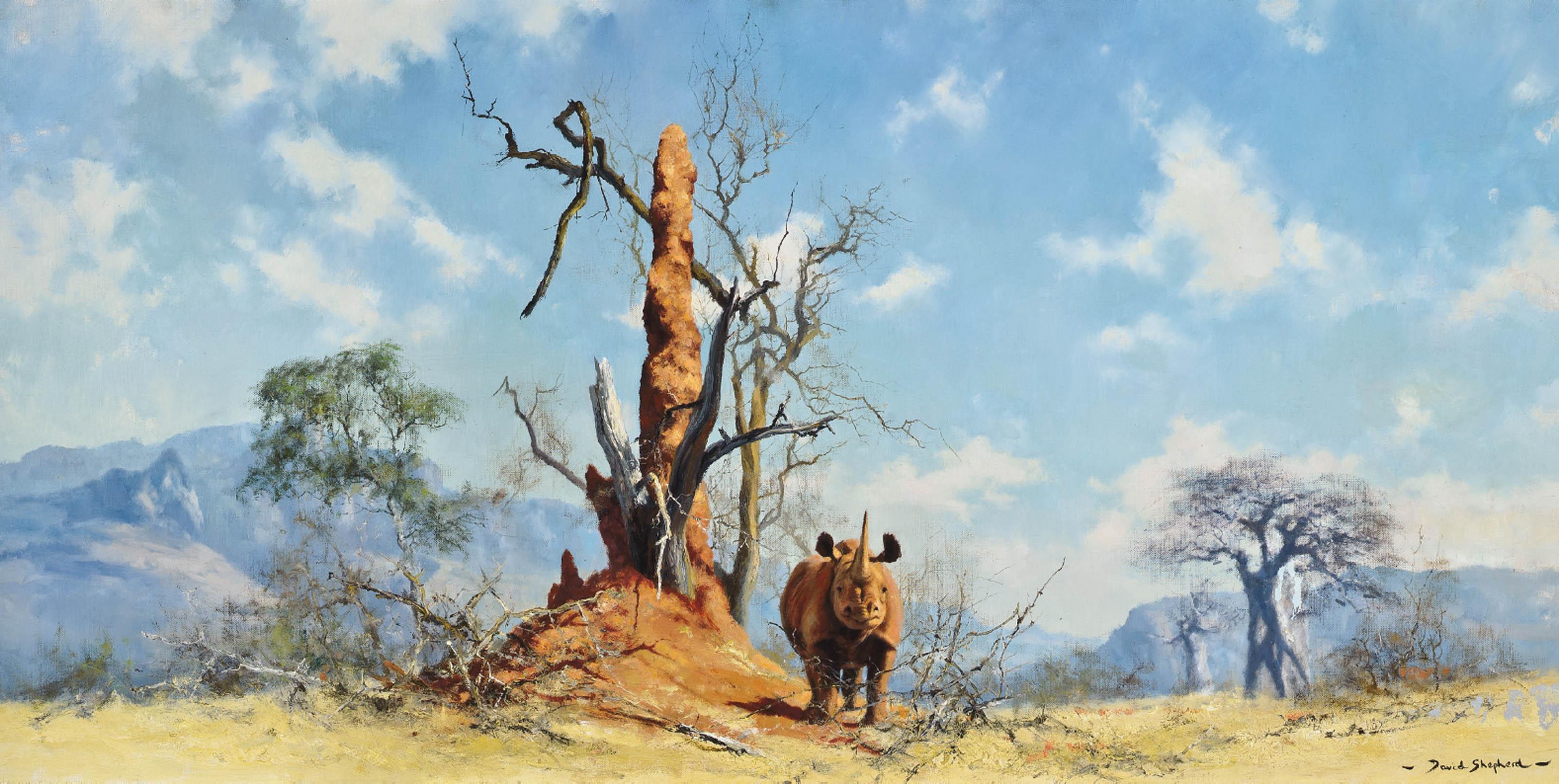 Rhino country