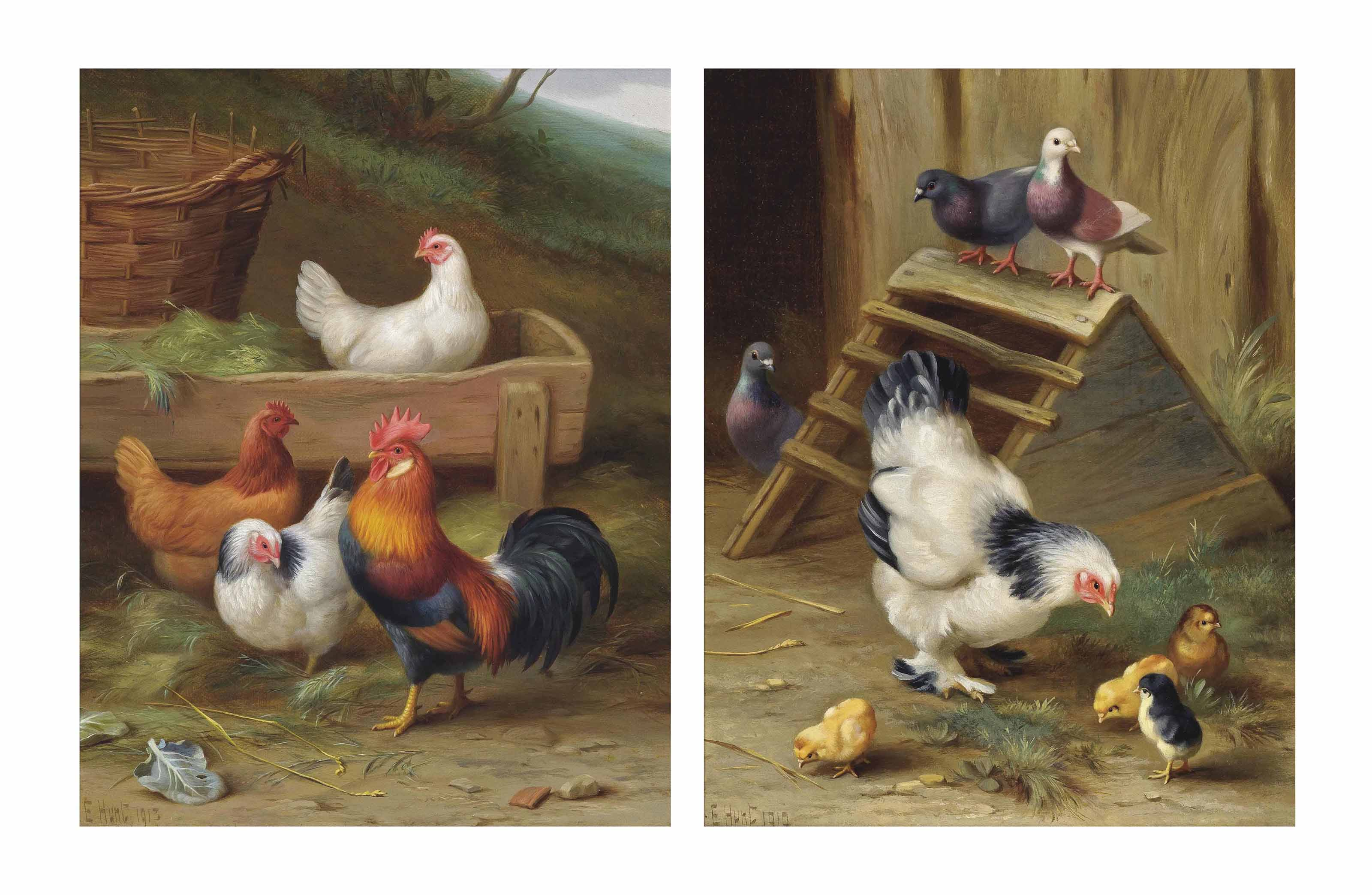A cockerel and his hens; and A mother hen and her chicks
