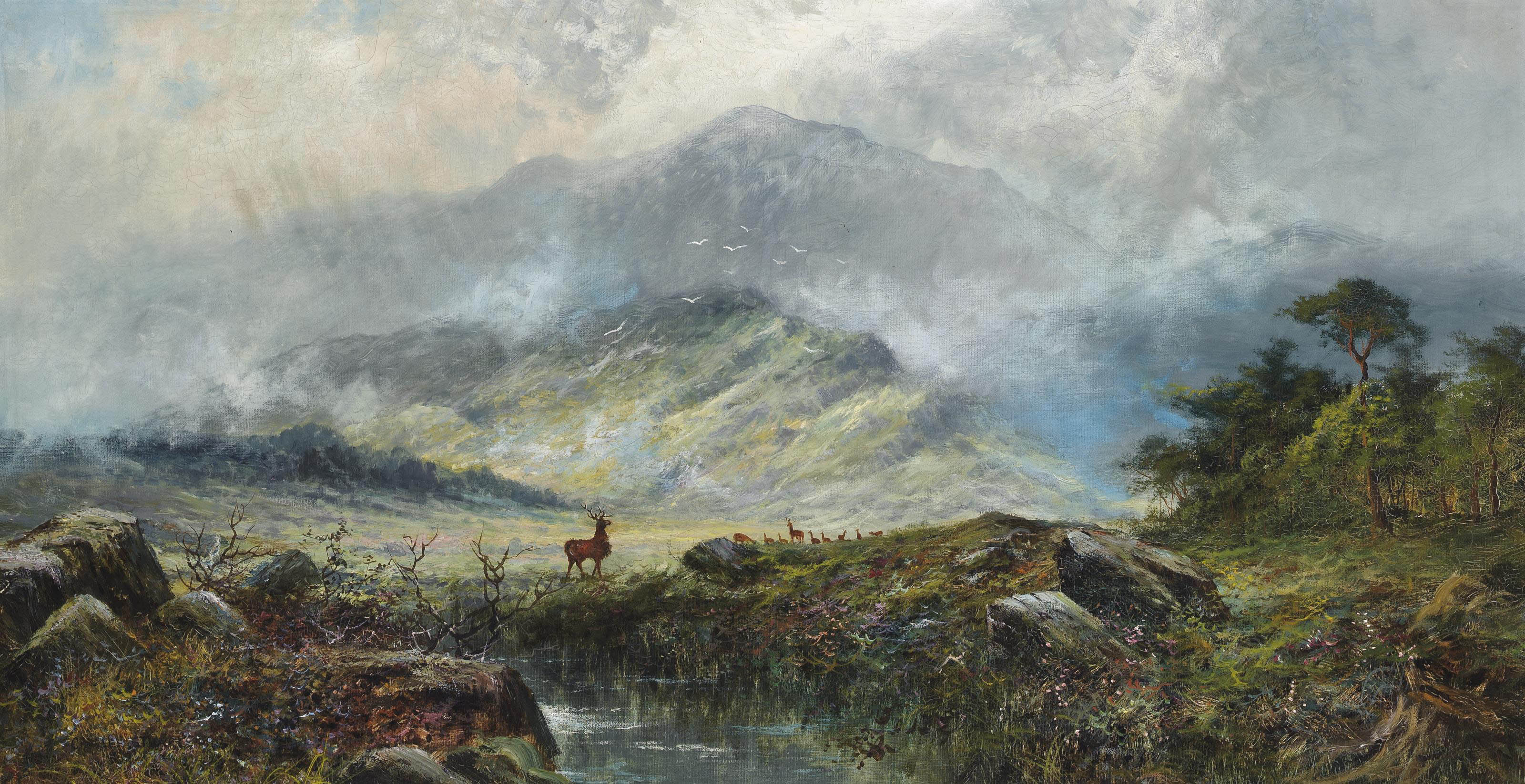 Stags in a misty highland landscape