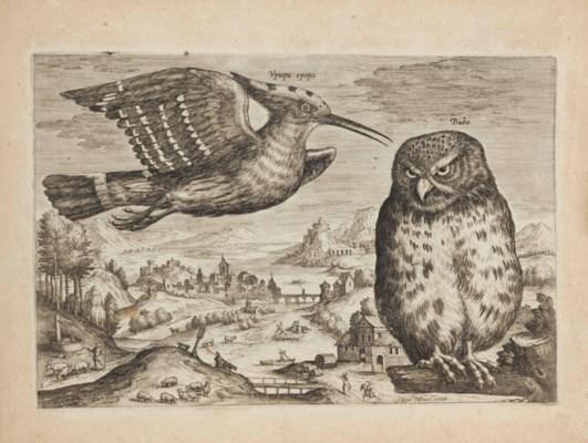 Adriaen Collaert (c.1560  1618