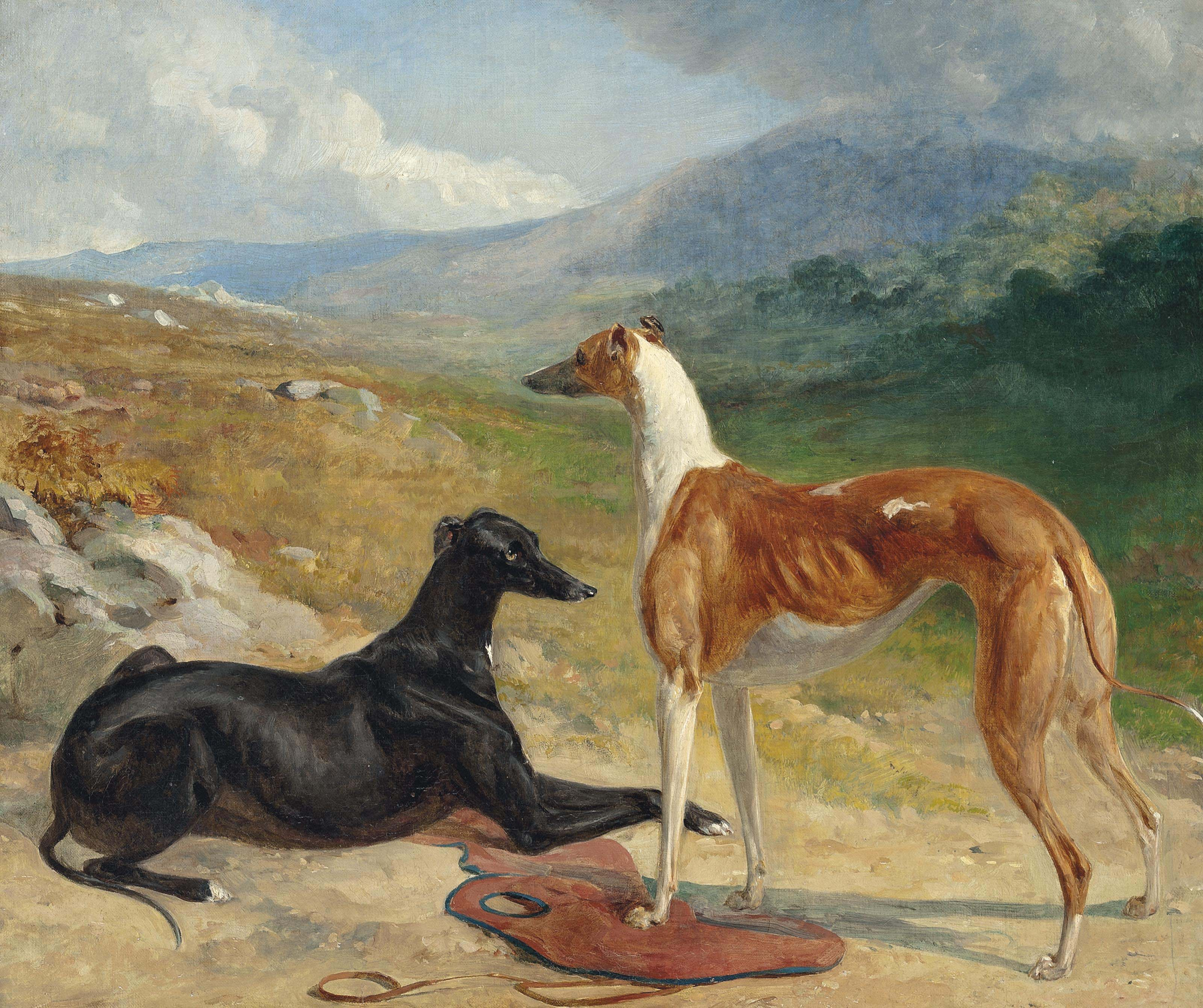 Two prize greyhounds in an extensive landscape