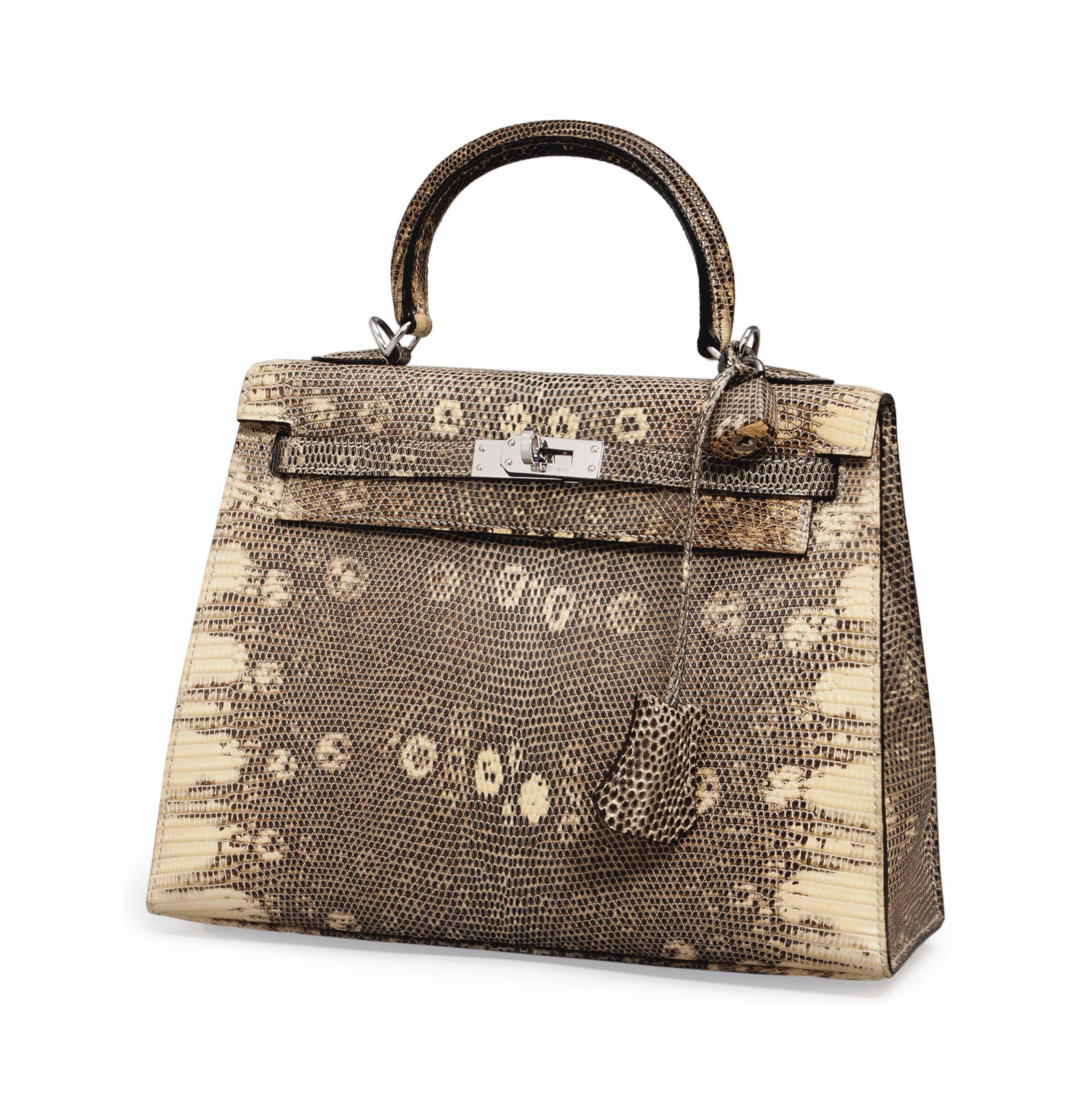 0d200a5b4c ... discount code for an ombre lizard kelly bag hermÈs 2007 21st century  bags 98bef 76d72 wholesale hermes ...
