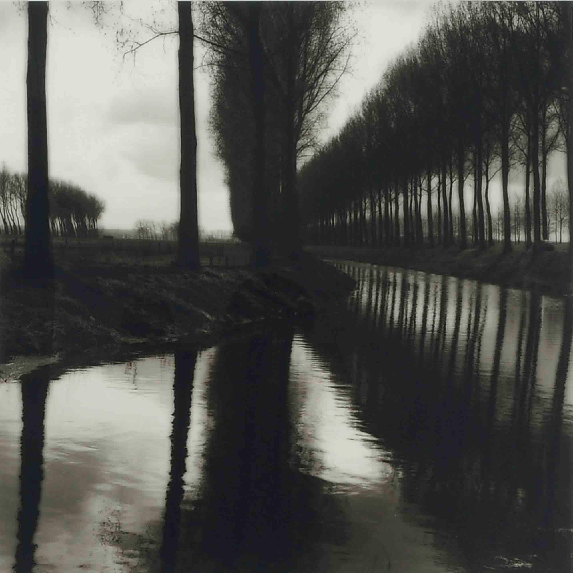 Lynn Geesaman (b. 1938)