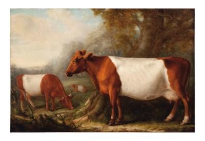 William Shiels (British, 1783-