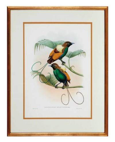 JOHN GOULD and WILLIAM HART (A