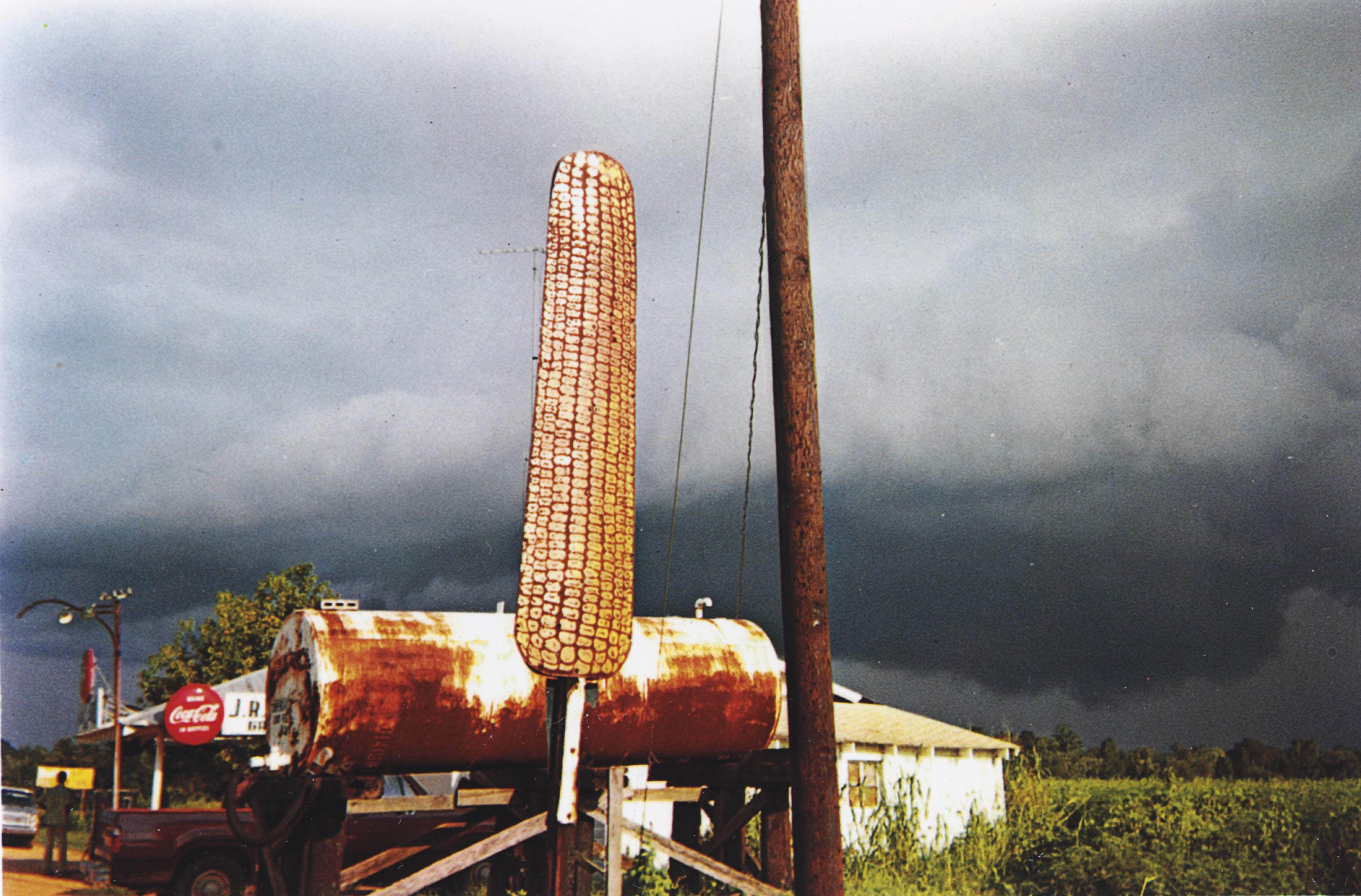 Corn Sign with Storm Cloud, Near Greensboro, Alabama, 1977