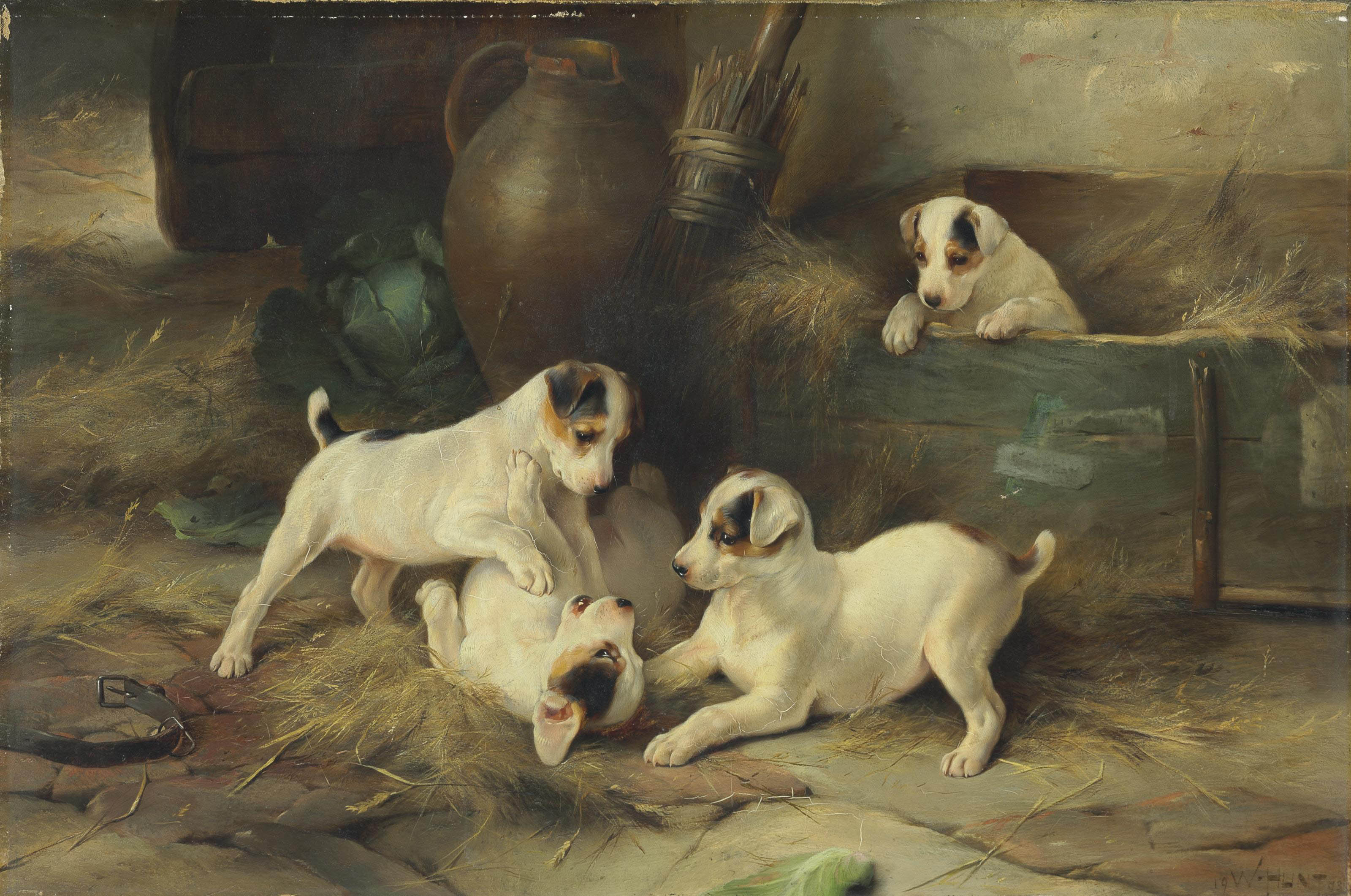 Four Puppies at Play