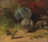 Squirrel and Mice
