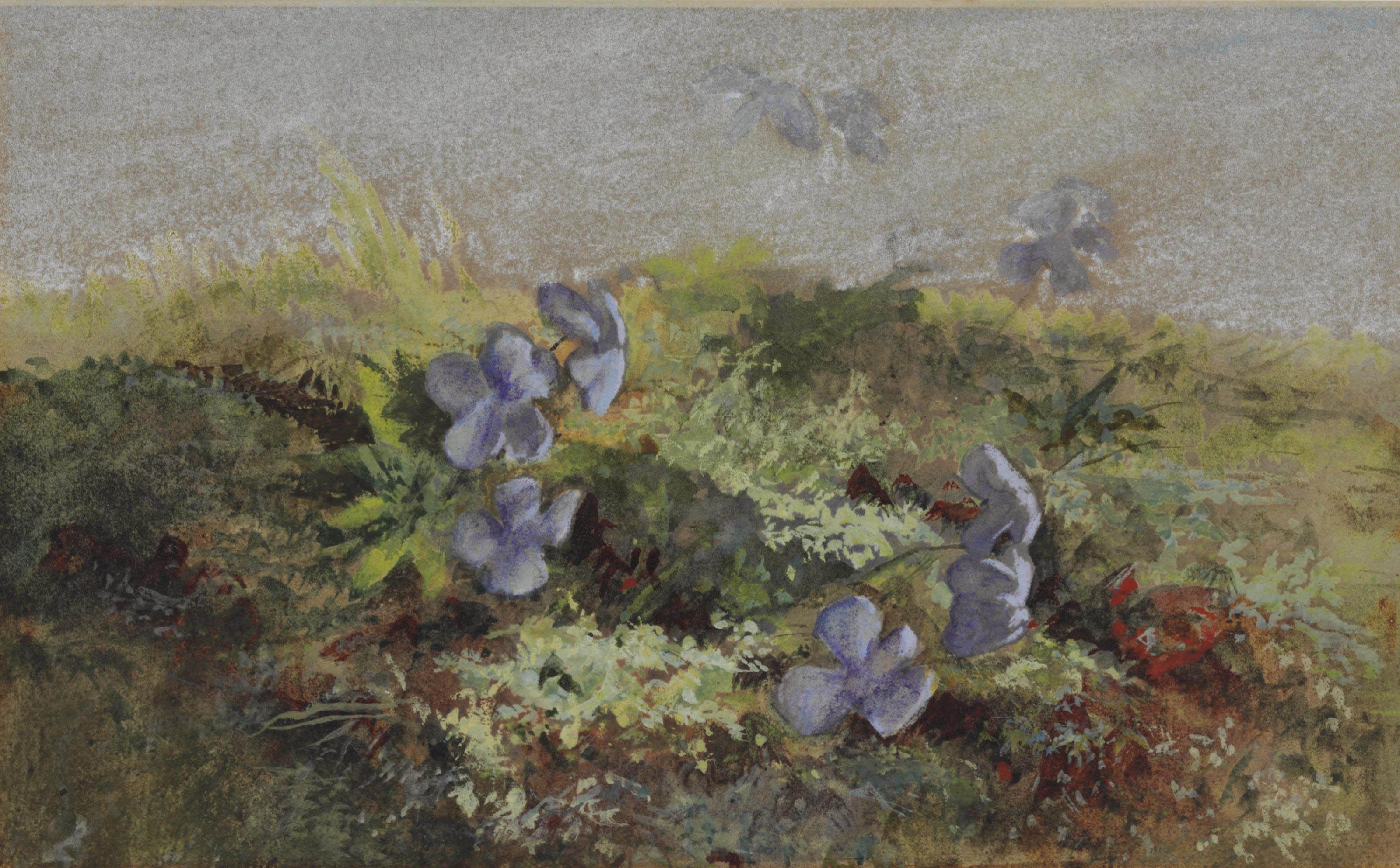 Violets in a Landscape