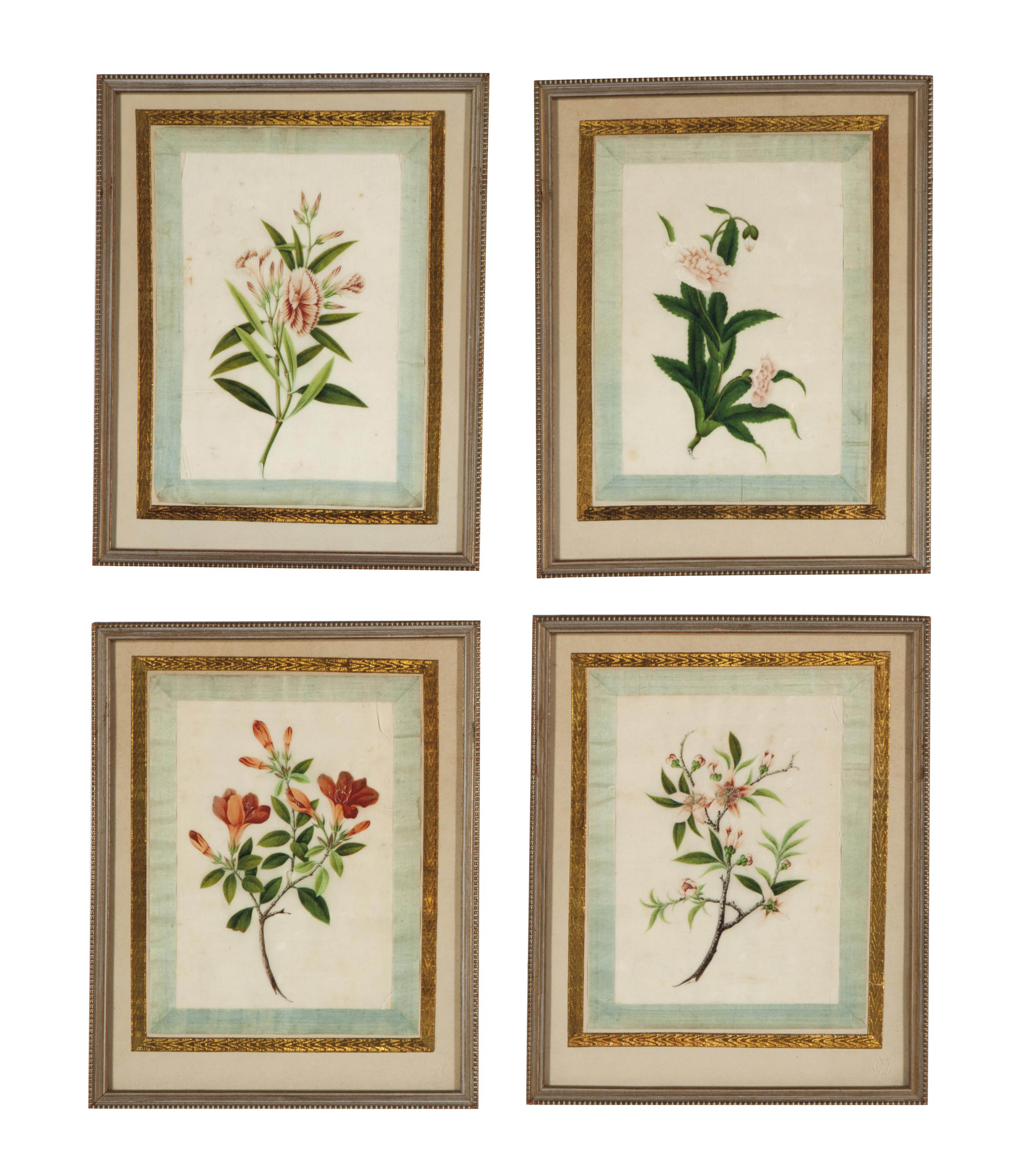 A SET OF FOUR CHINESE EXPORT BOTANICAL PAINTINGS,