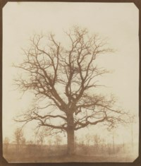 Oak Tree in Winter, c. 1842-1843