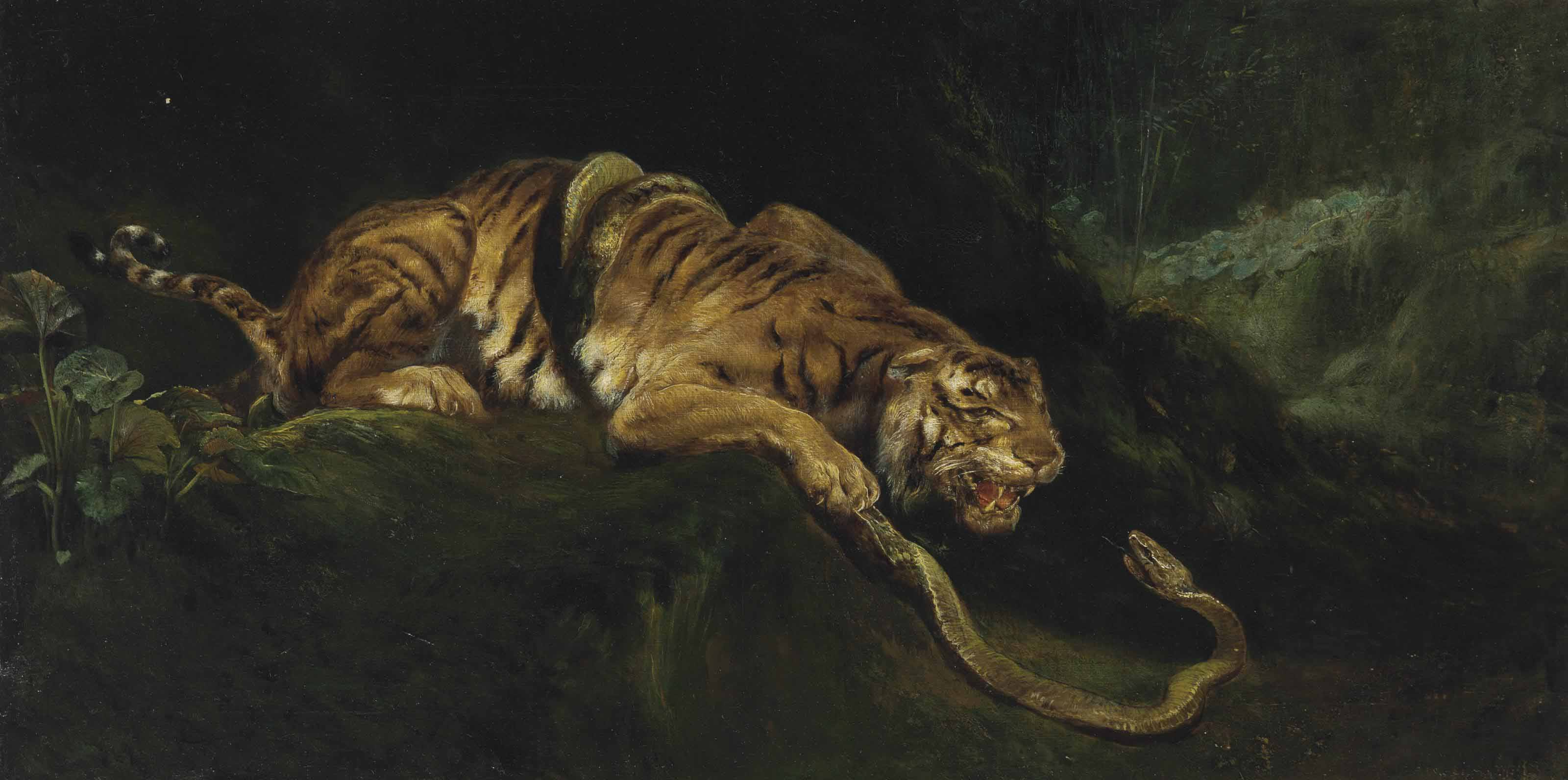 A Tiger Struggling with a Snake