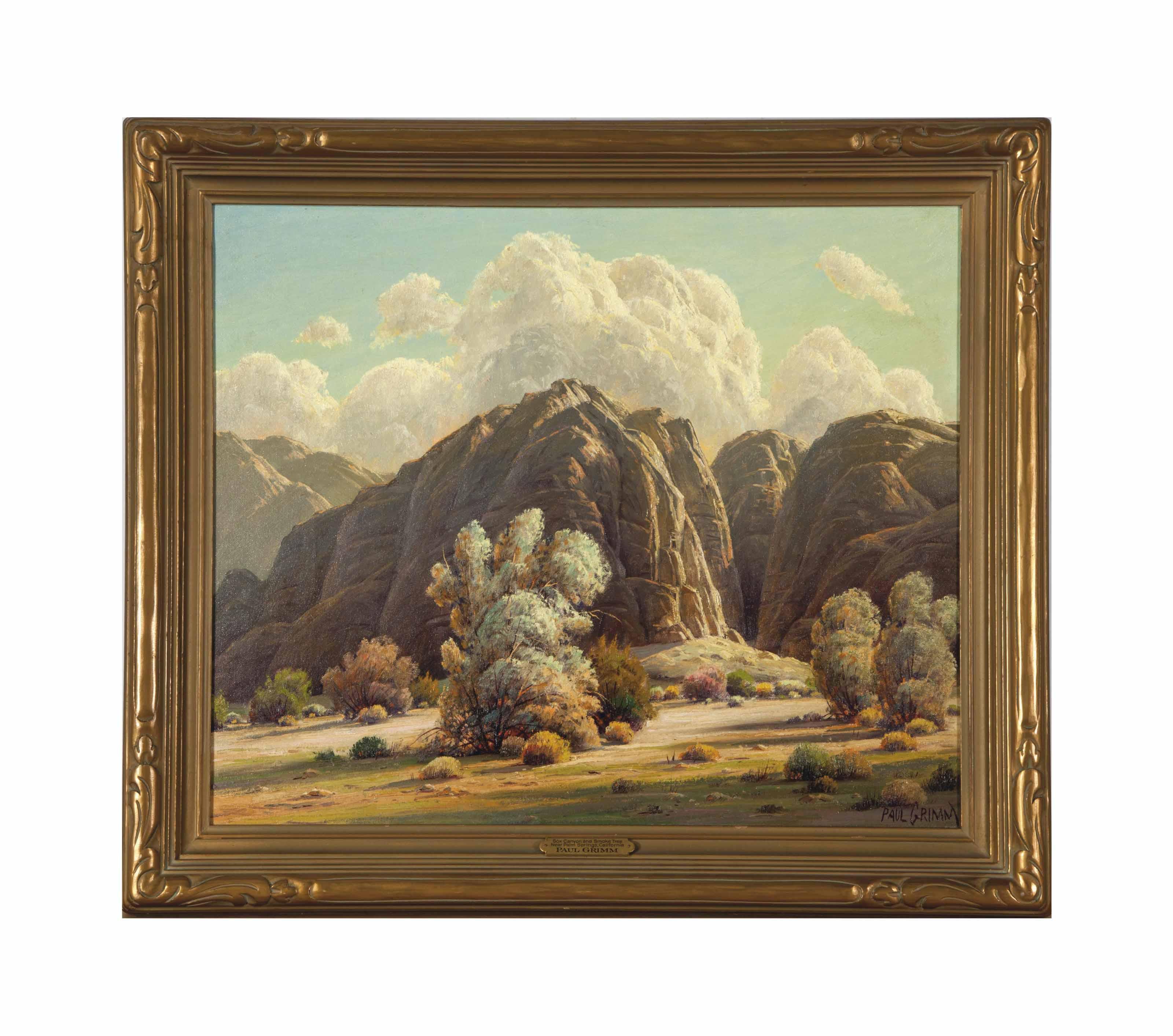 Box Canyon and Smoke Trees Near Palm Springs California