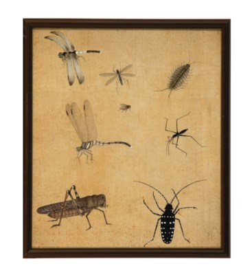 FOUR PAINTINGS OF INSECTS ON S