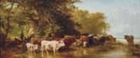 Troupeau de vaches s'abreuvant
