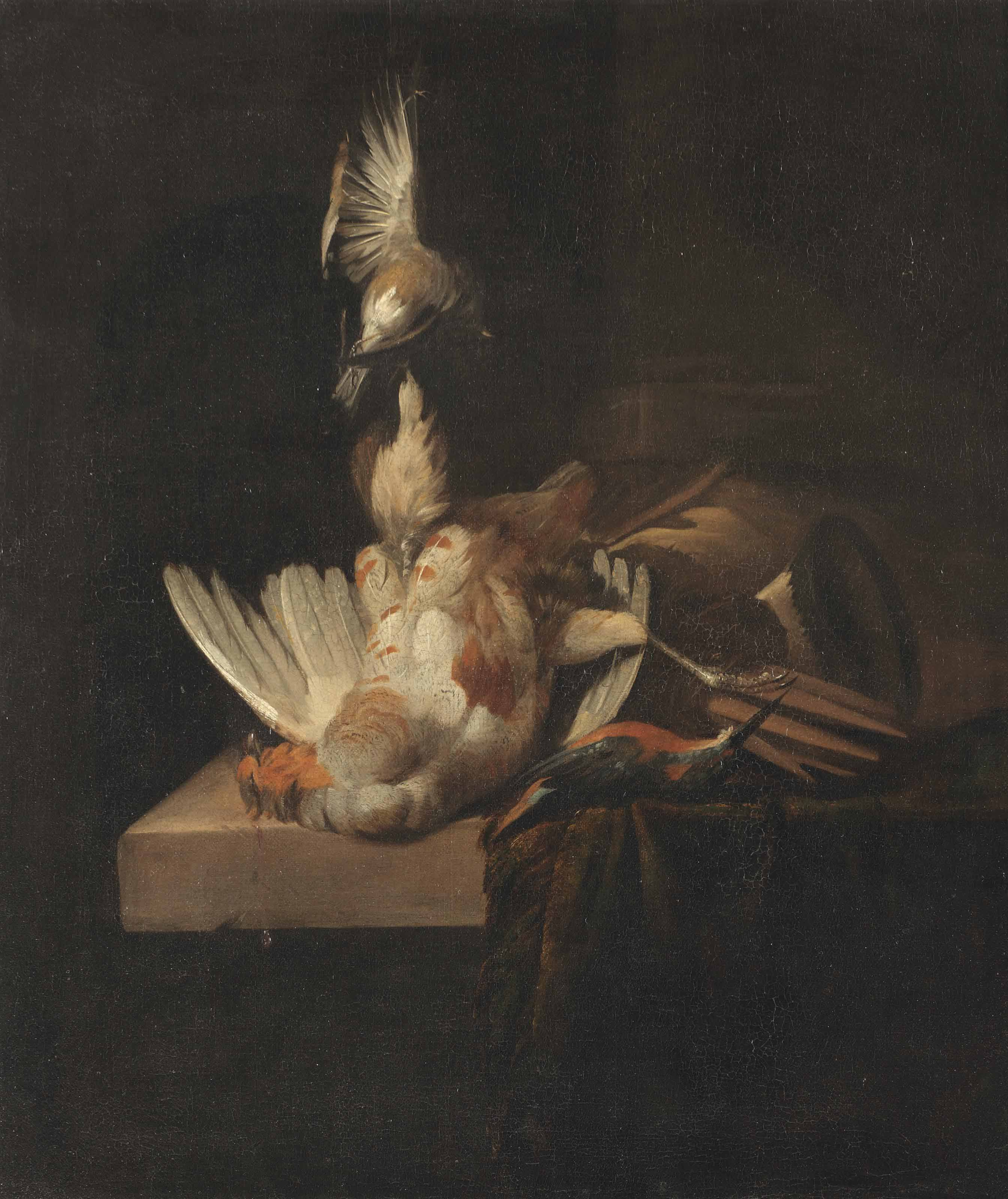 A finch suspended from a rope, a partridge and a kingfisher on a partially draped stone ledge