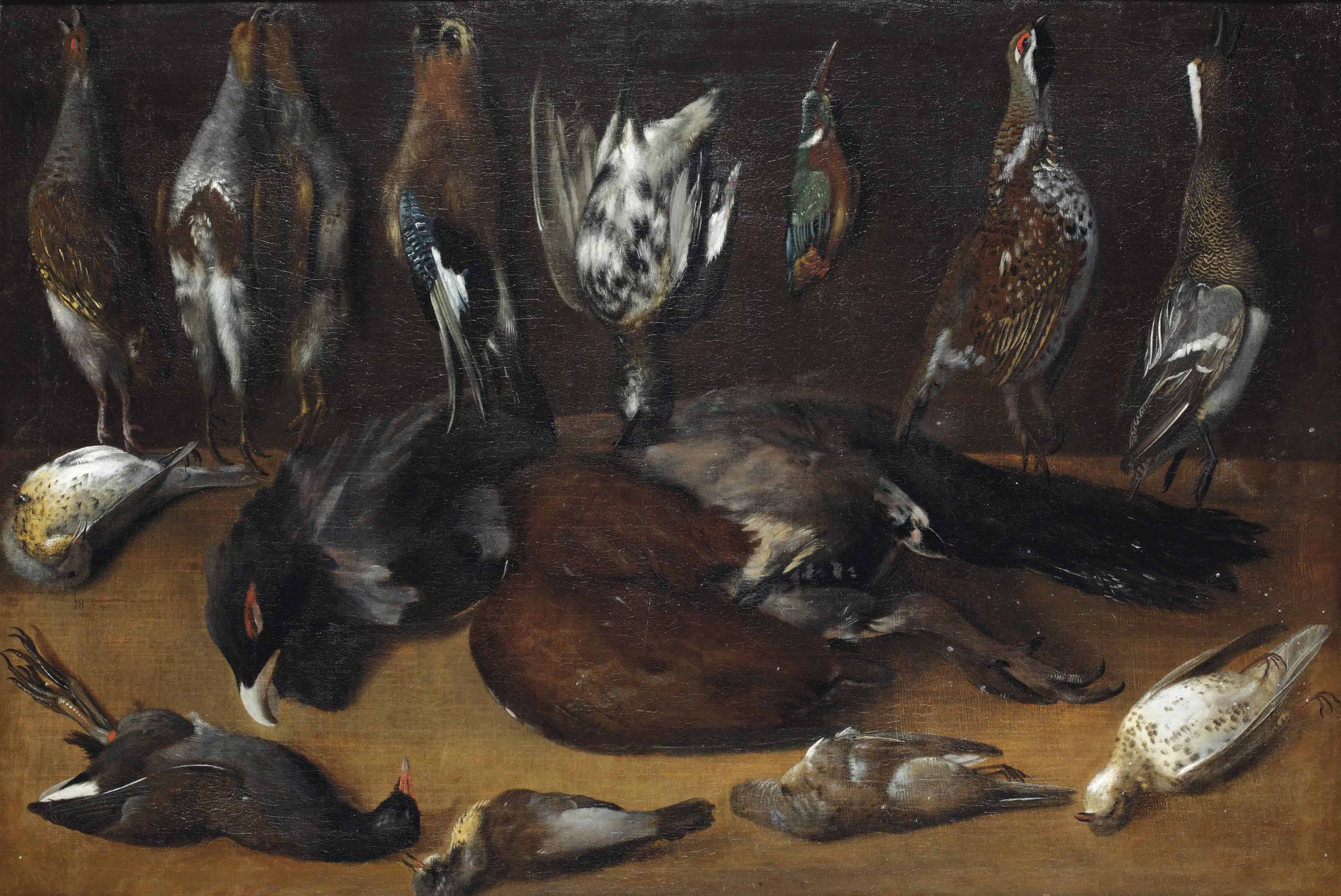 Partridges, an eurasian jay, a quail, a kingfisher and a duck, all suspended from nails, a capercaillie and various other birds on a table