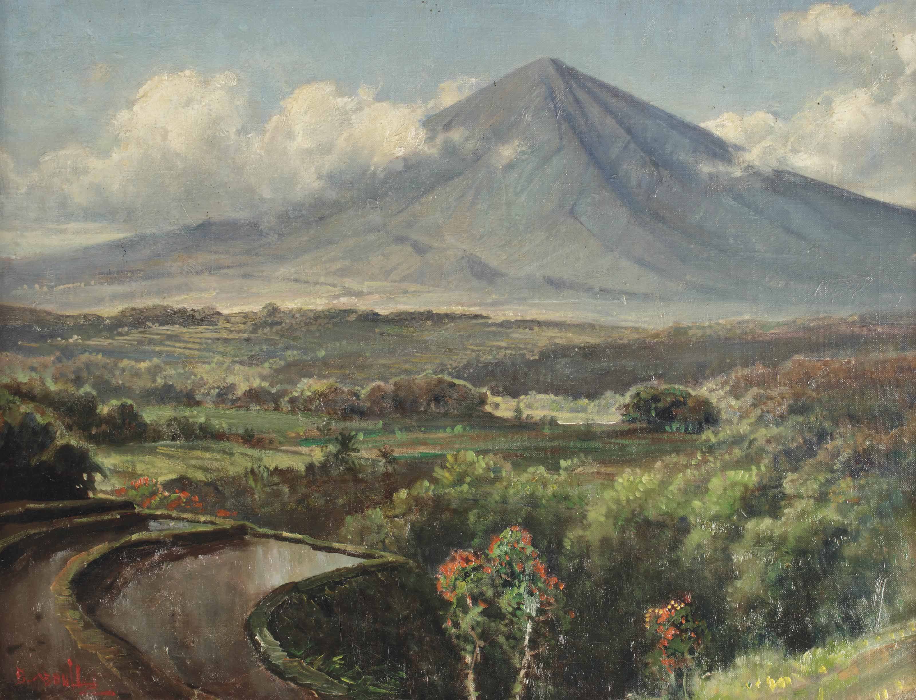 A landscape with sawahs, Indonesia